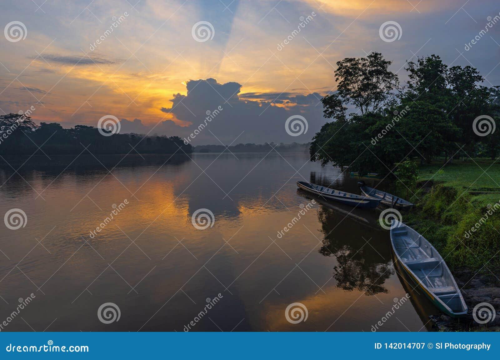 Kanoter på solnedgången i den Amazon River handfatet, Ecuador