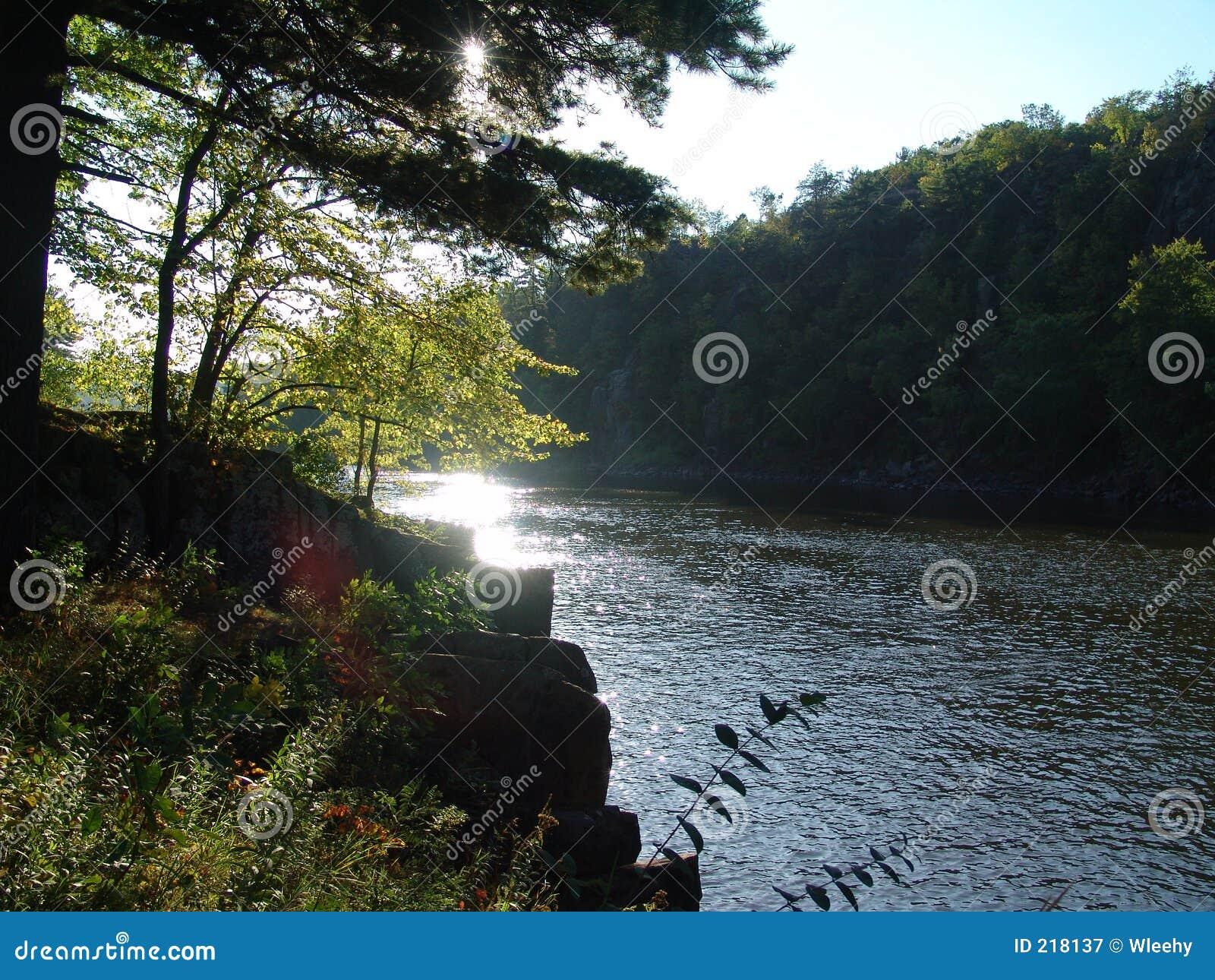 Kantfloder