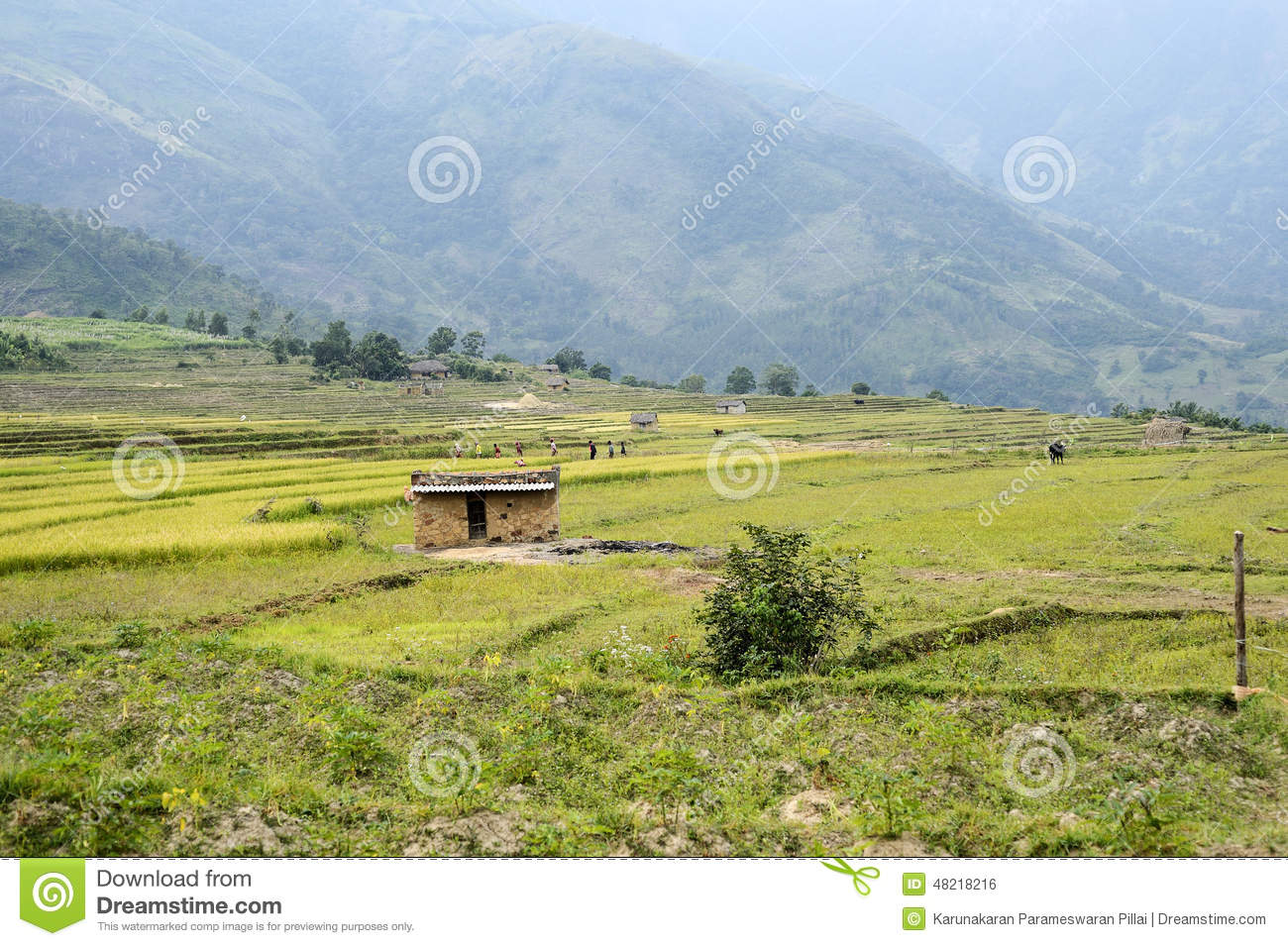 Landscape of terraced cultivation,farm land and houses built with mud ...