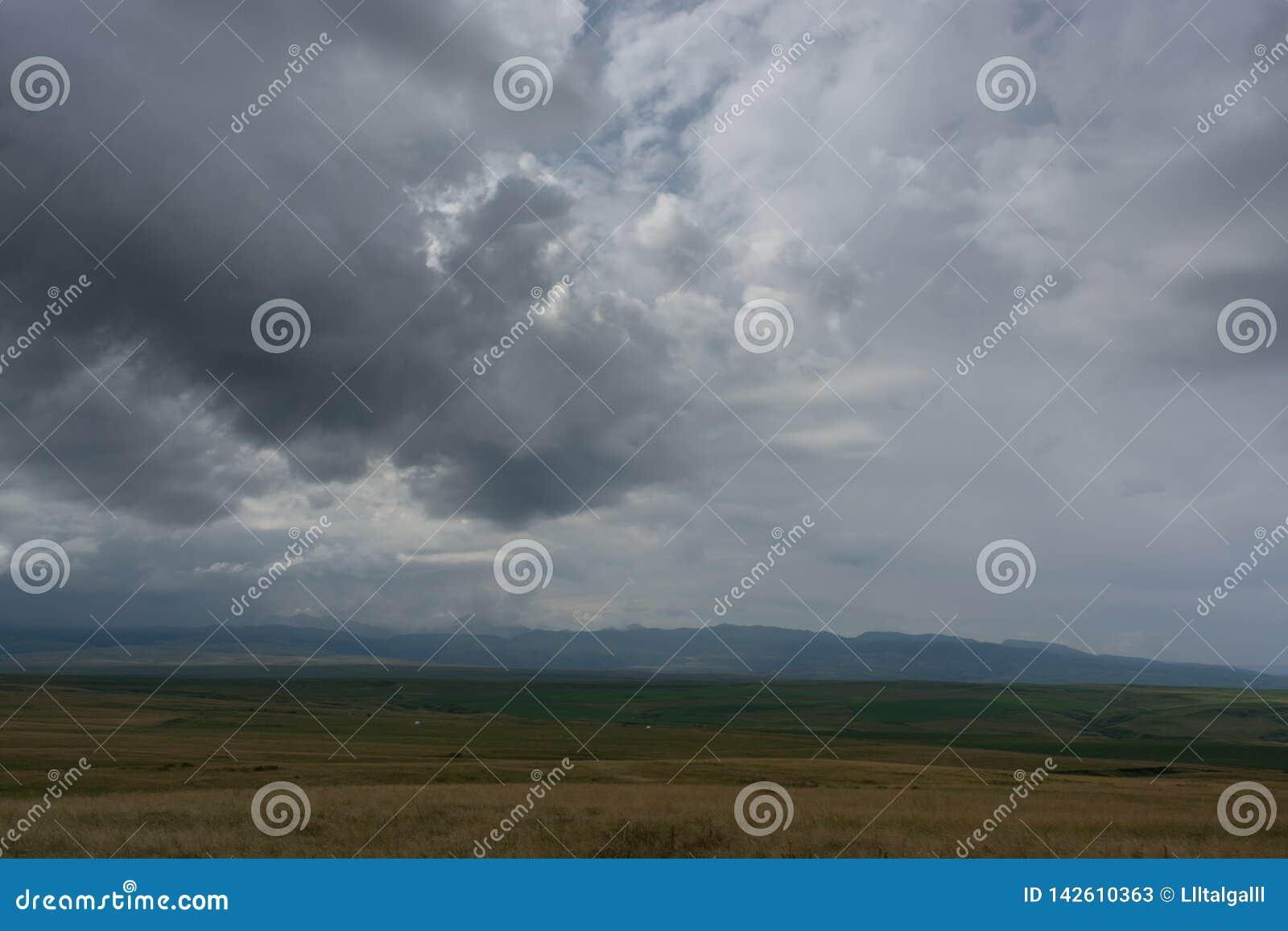 Φωτογραφία που λαμβάνεται από ένα ύψος Πράσινος τομέας με τα δέντρα r