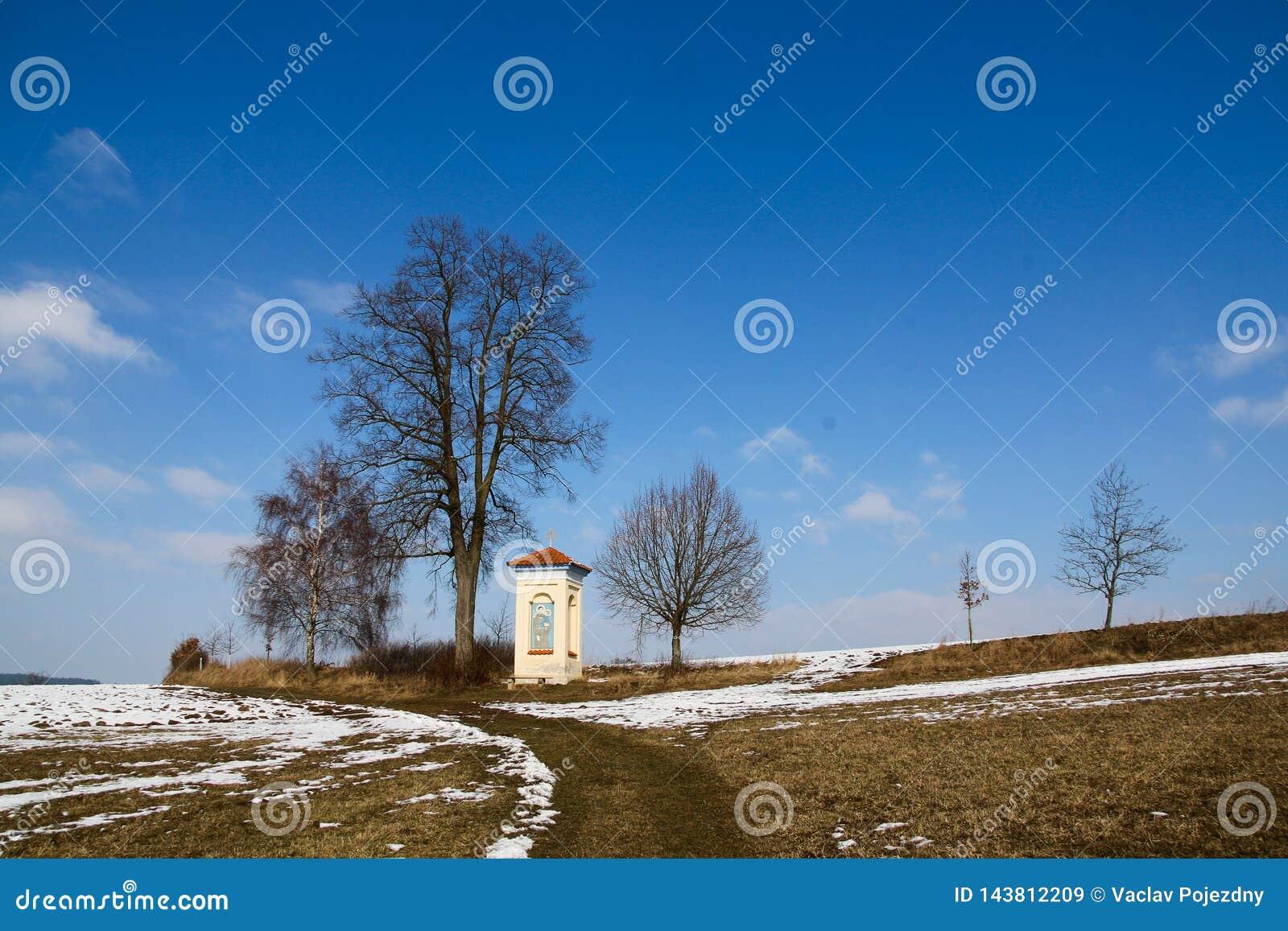 Kapelheuvel door een boom