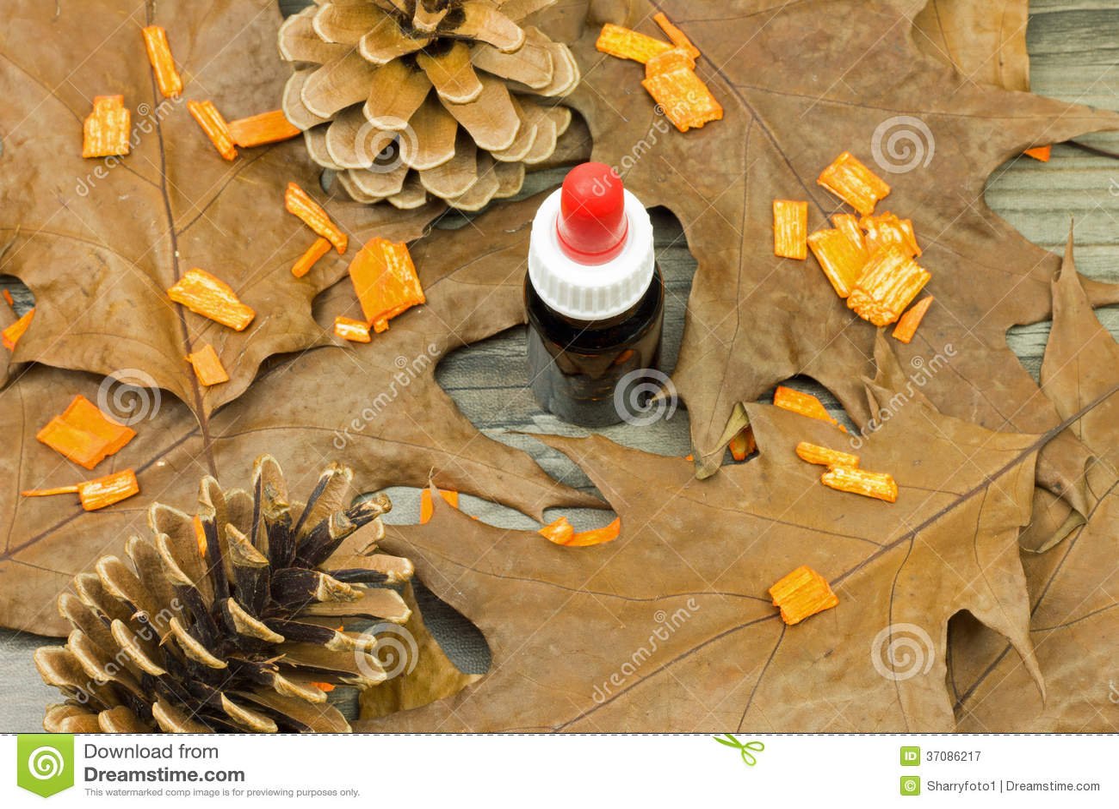 Download Kapinos butelka obraz stock. Obraz złożonej z butelki - 37086217