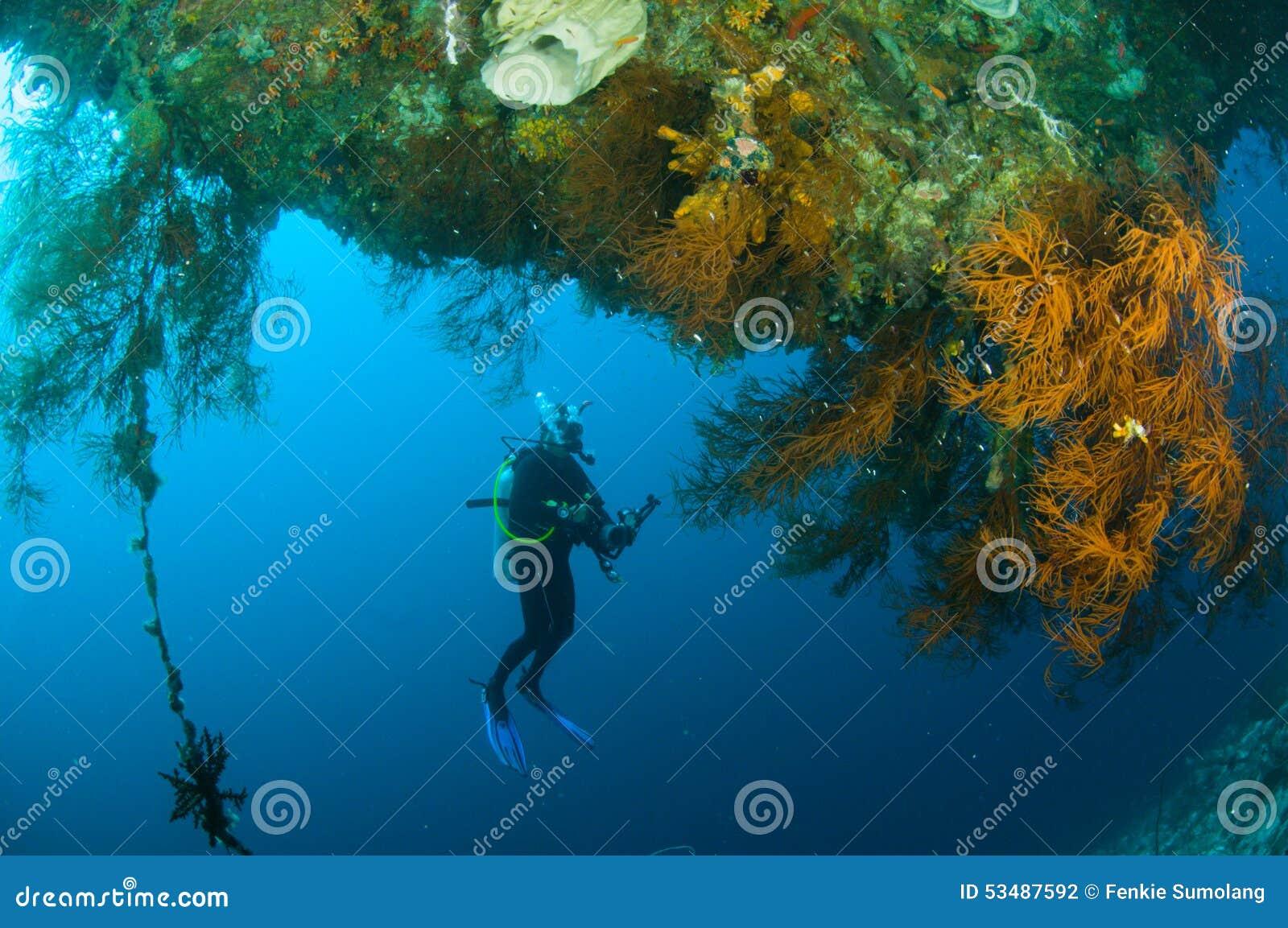Kapoposang Sulawesi Indonesia dell operatore subacqueo di immersione con bombole subacquea