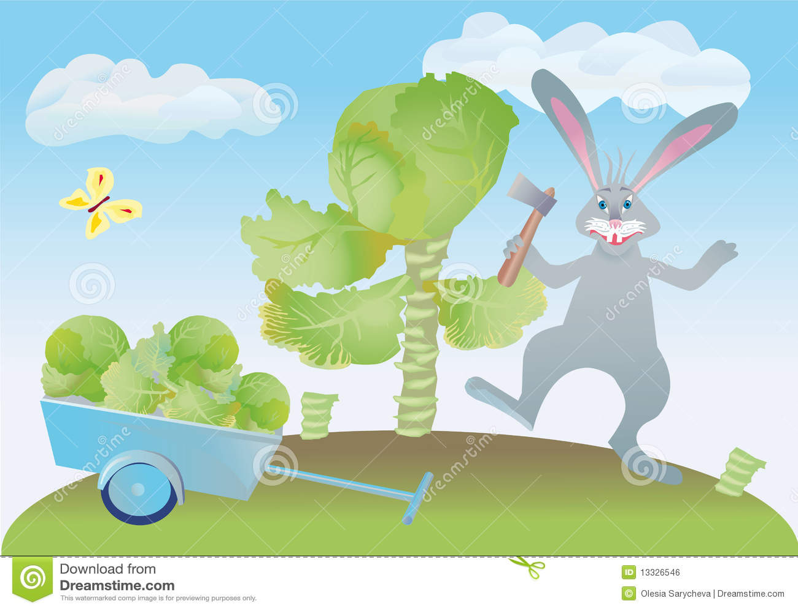 Kapusta sieka zajęczego wesoło królika