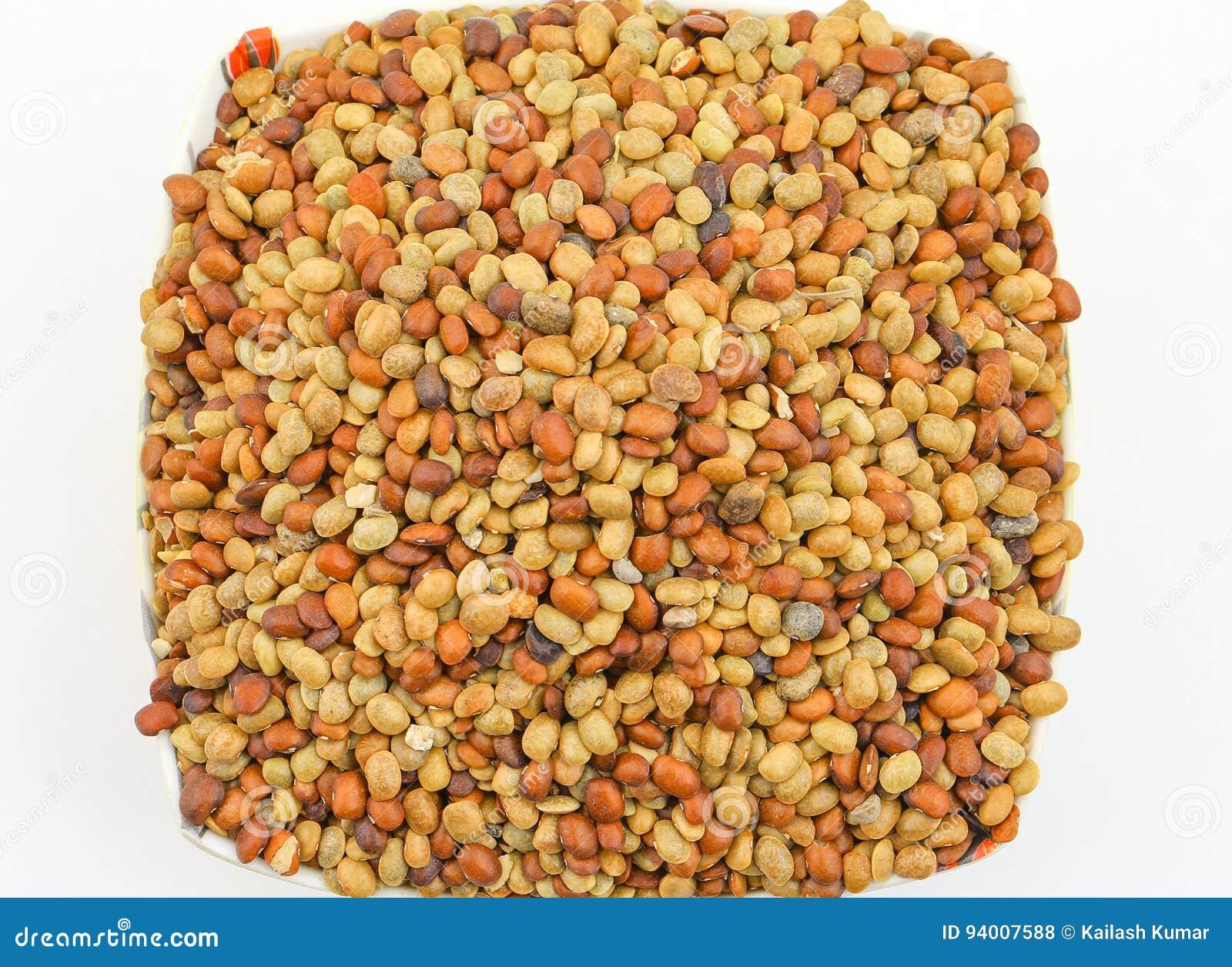 Karat seeds stock photo  Image of kalt, isolate, diet - 94007588