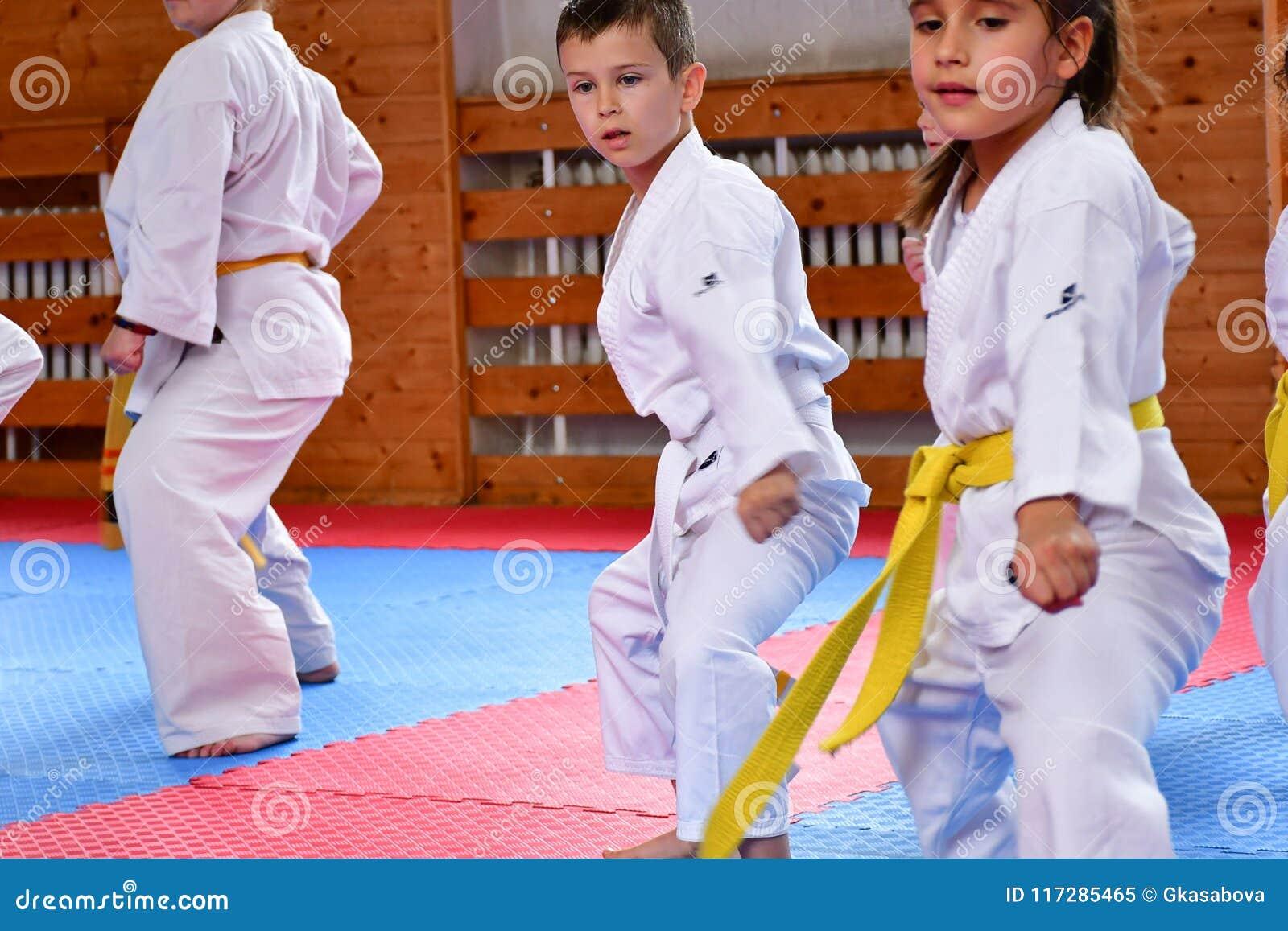 Karate κατάρτιση