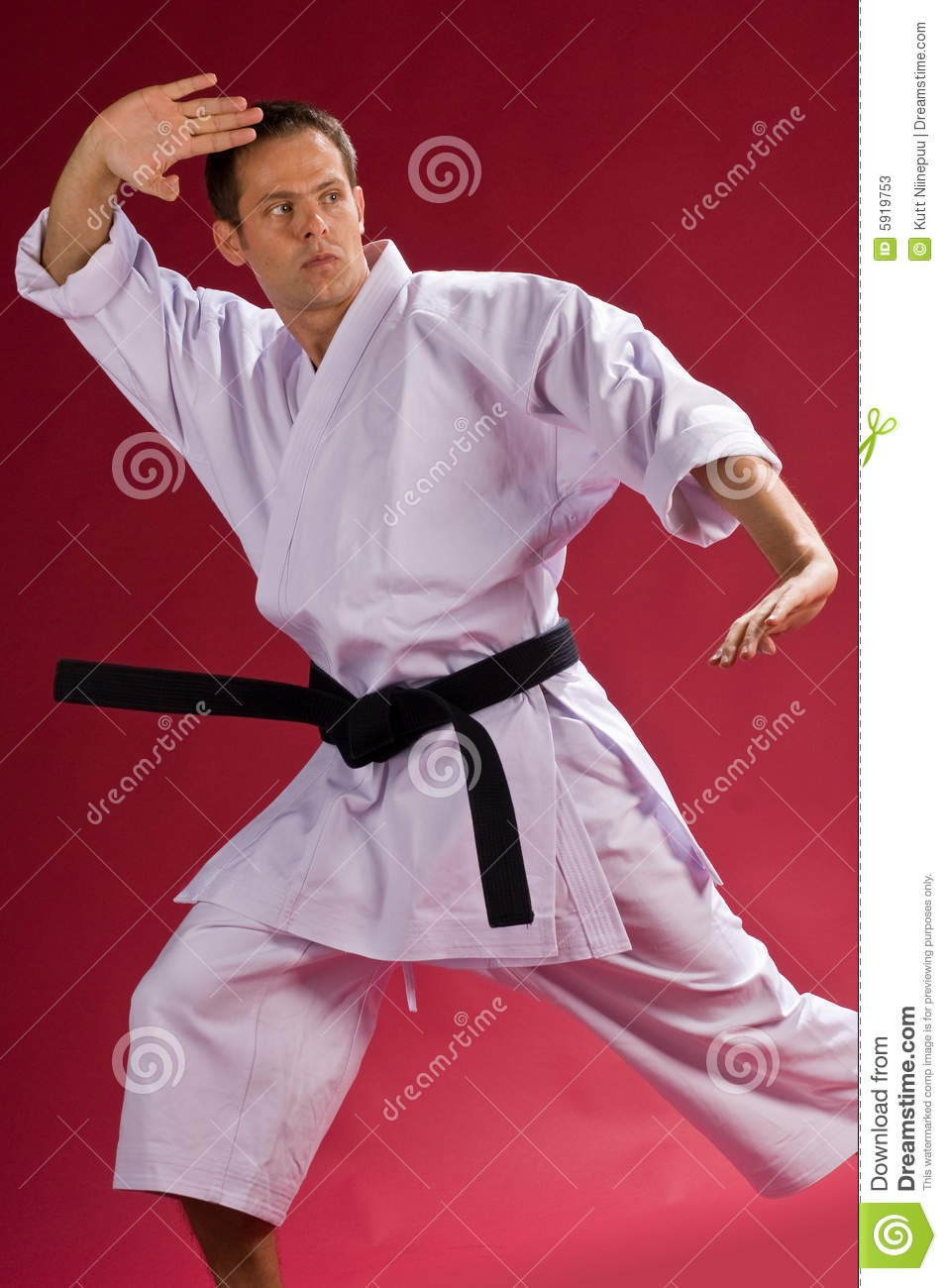 Karate Chop Stock Photos - Image: 5919753
