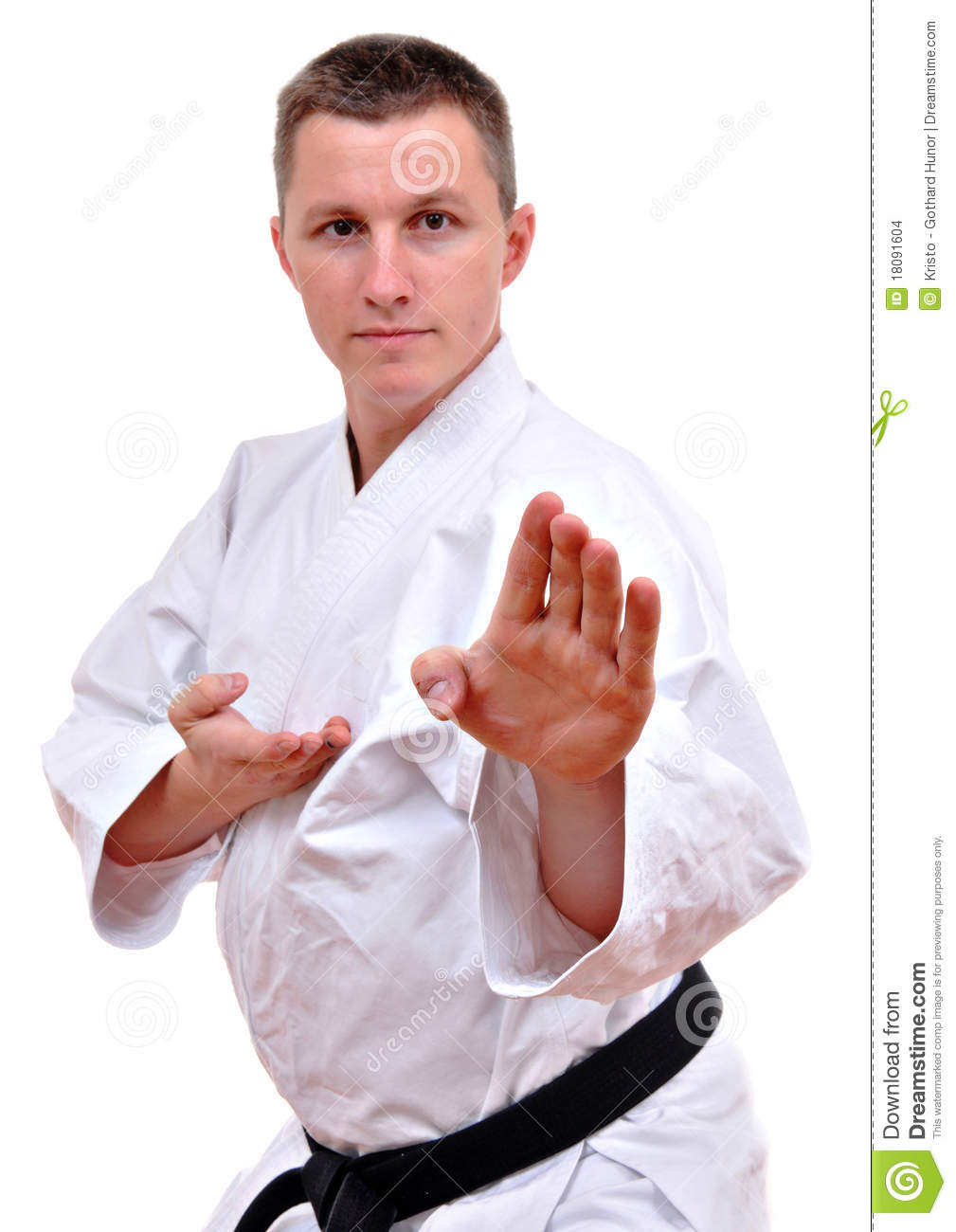 Karate fighting stock photo. Image of male, handsome ...