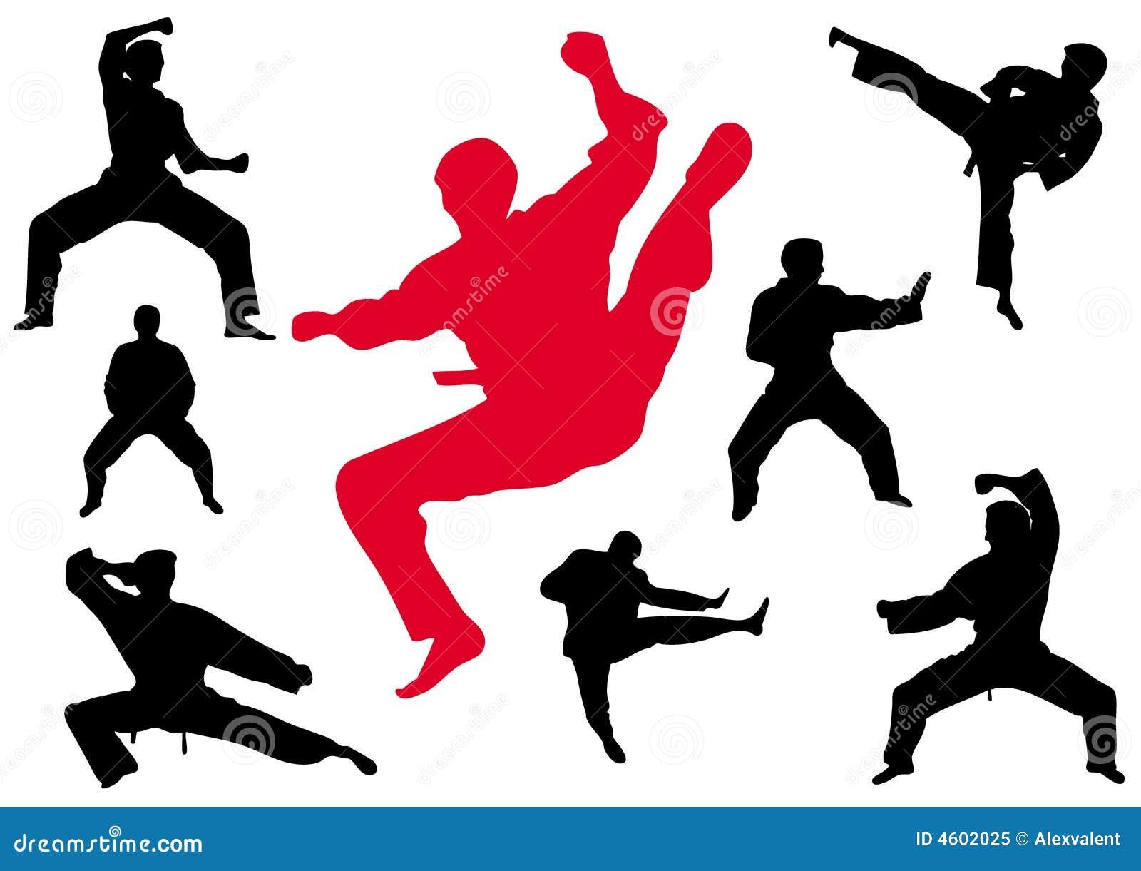 Karate Kungfu Royalty Free Stock Photo - Image: 4602025