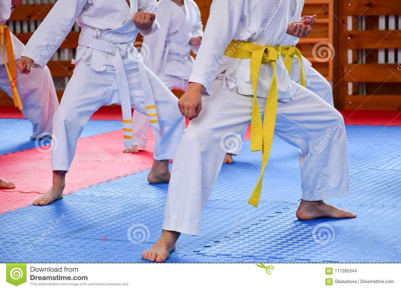 Karate opleiding
