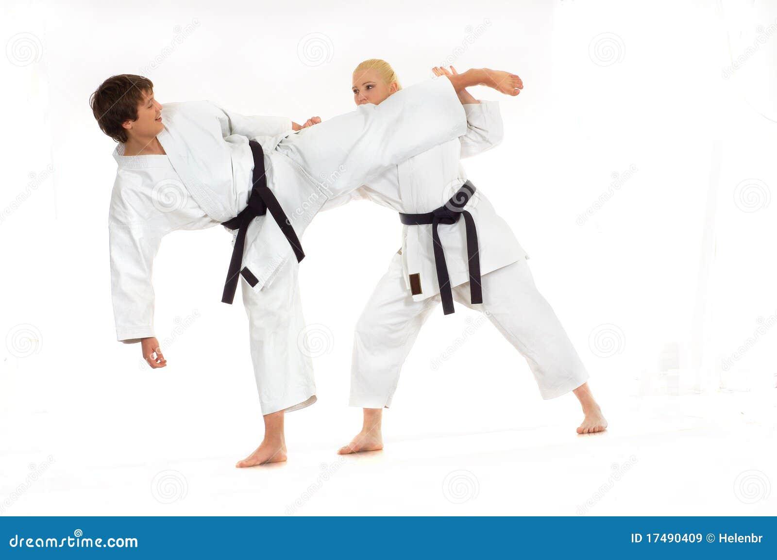 karate business plan