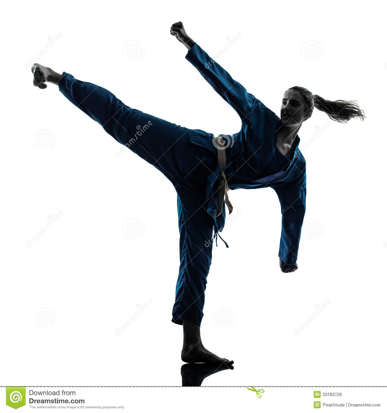 A Silhouette Of A Karate Woman Stock Photo - Image: 31137710