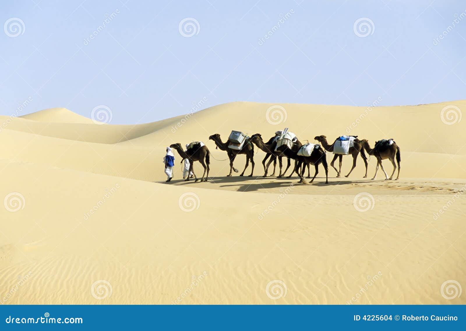 Karawana wielbłądzia