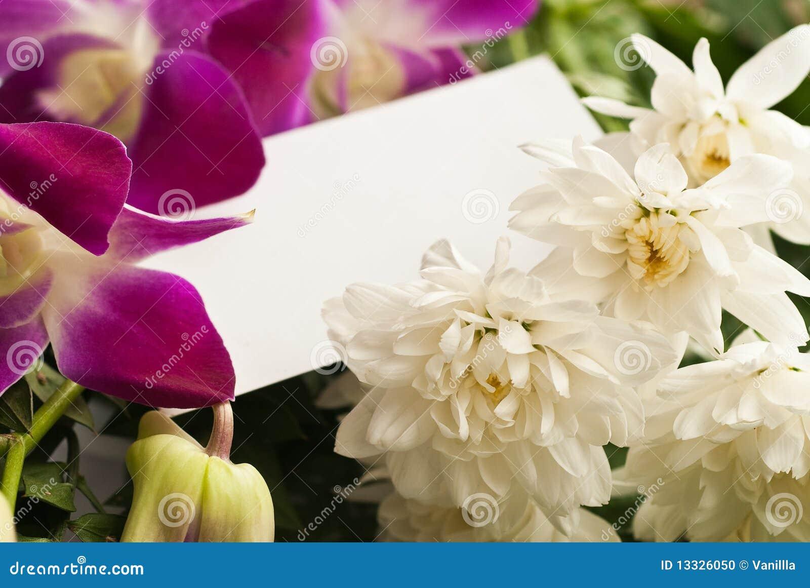 Karciani blanch kwiaty