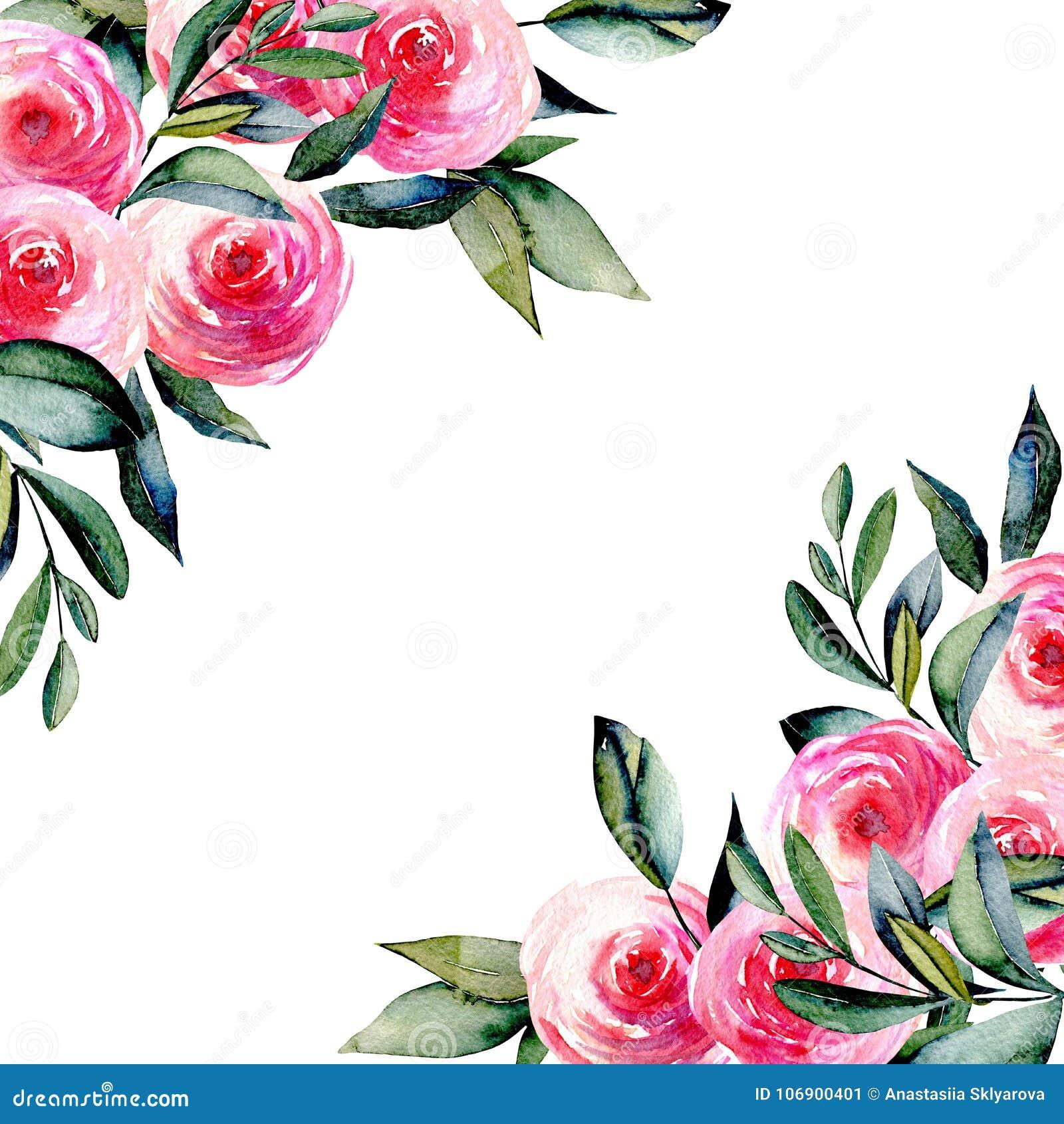 Karciany szablon z akwareli czerwonymi różami zielenią i opuszcza w kątach, ręka rysująca na białym tle