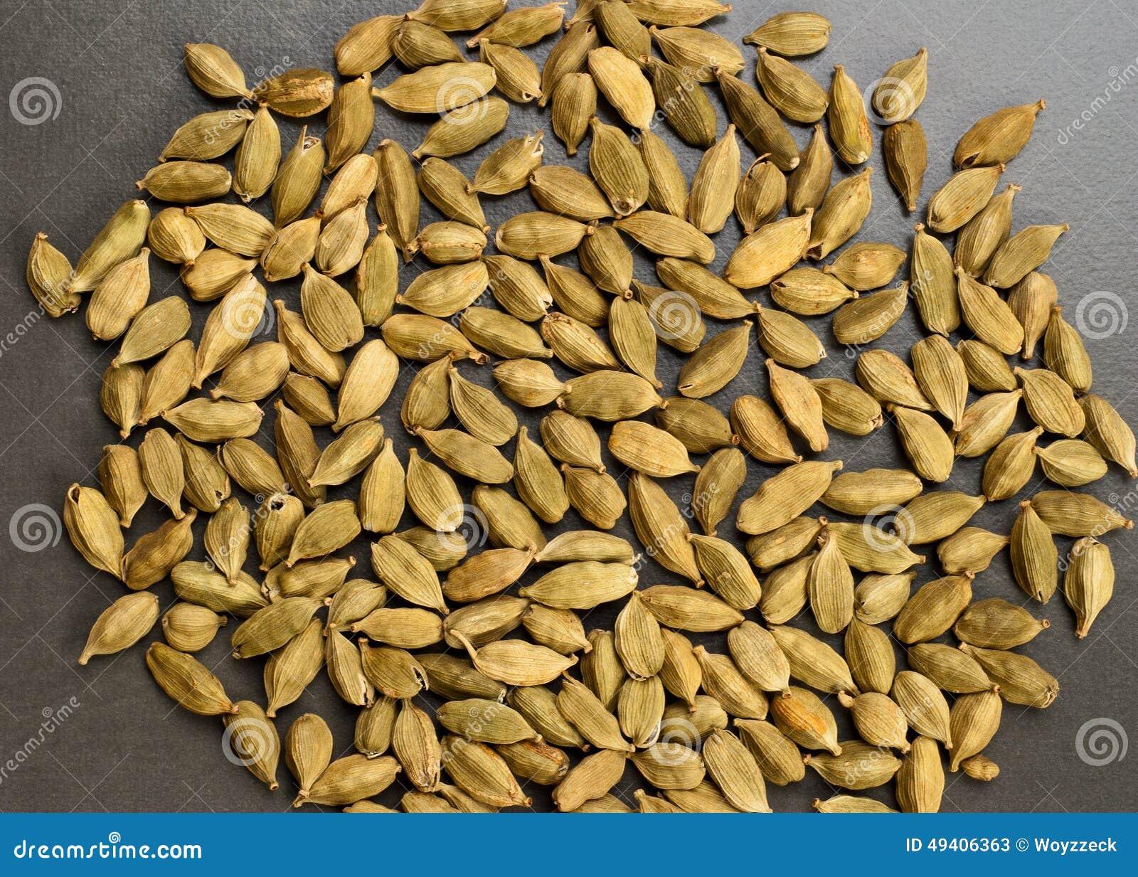 Download Kardamompflanze stockbild. Bild von nahrung, indisch - 49406363