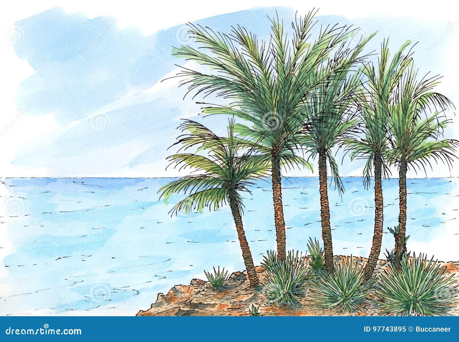 Karibisk hav-kust med palmträd