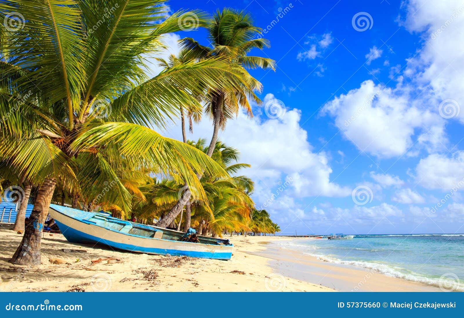 Karibisk strand i Dominikanska republiken