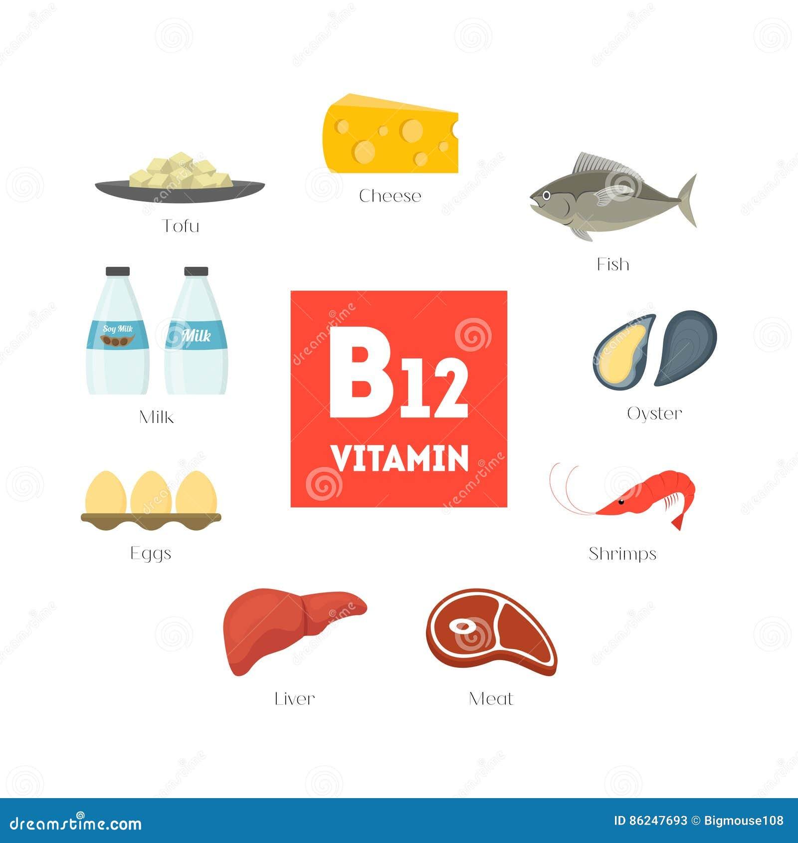 Karikatur-Lebensmittel Mit Vitamin B10 Infographics Vektor Vektor