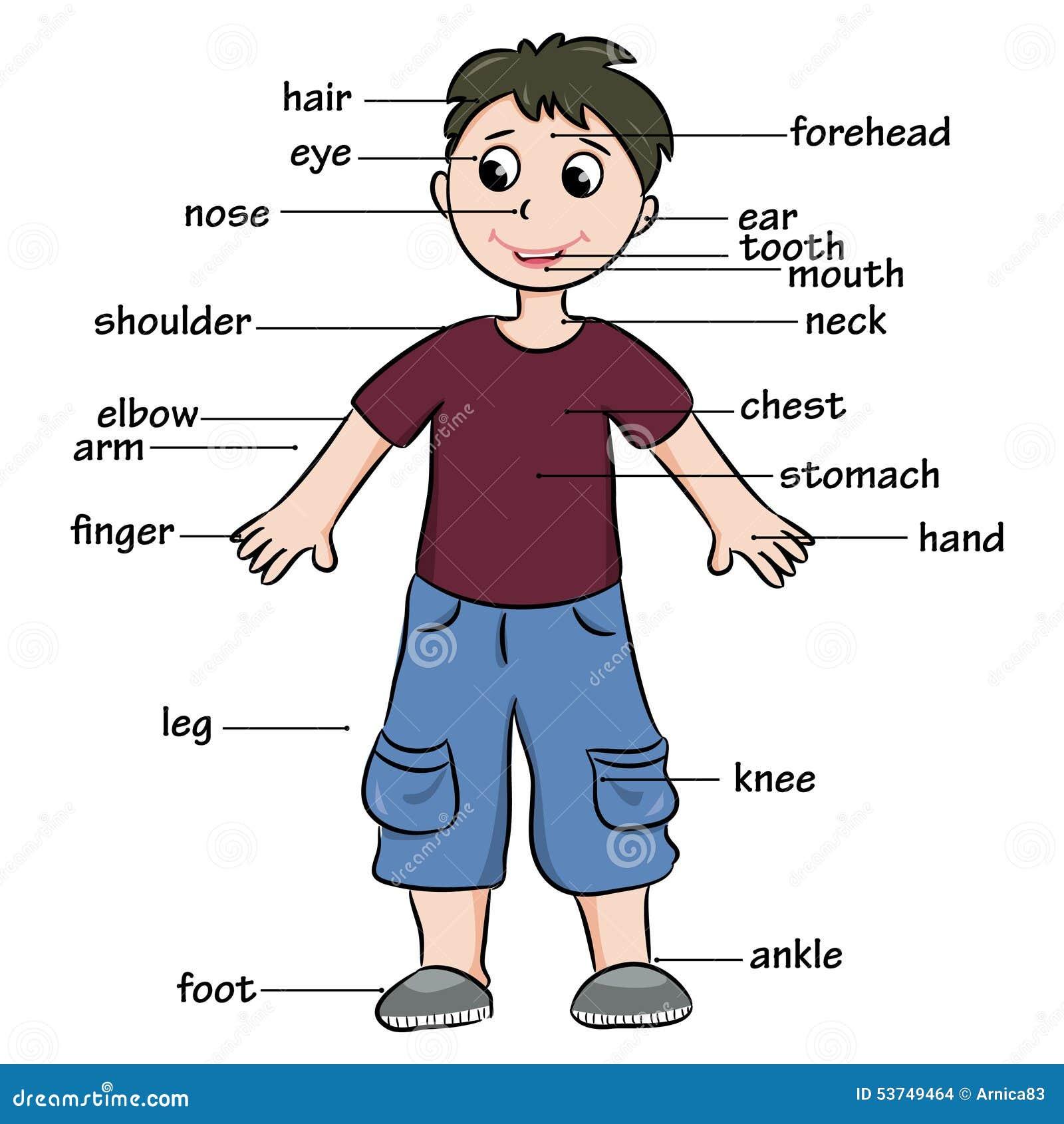 Clothes vocabulary spanish