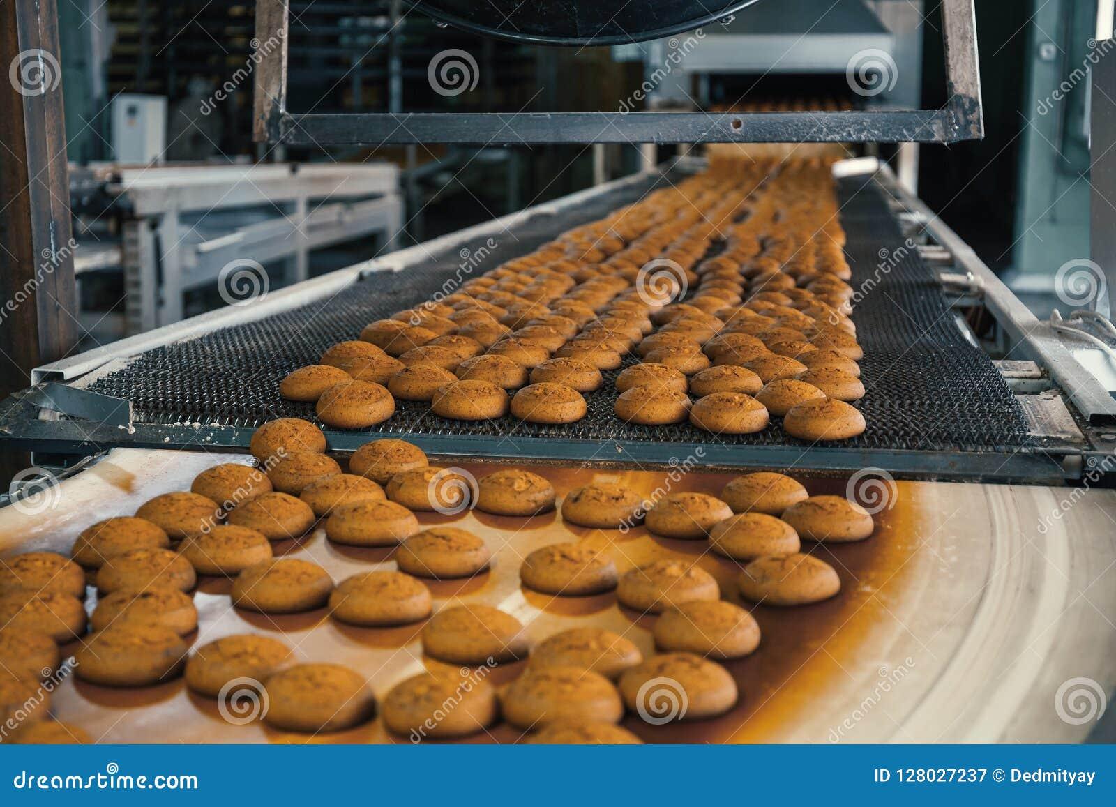 Karmowy fabryki, linii produkcyjnej lub konwejeru pasek z świeżymi piec ciastkami, Nowożytny automatyzujący ciasteczko i piekarni