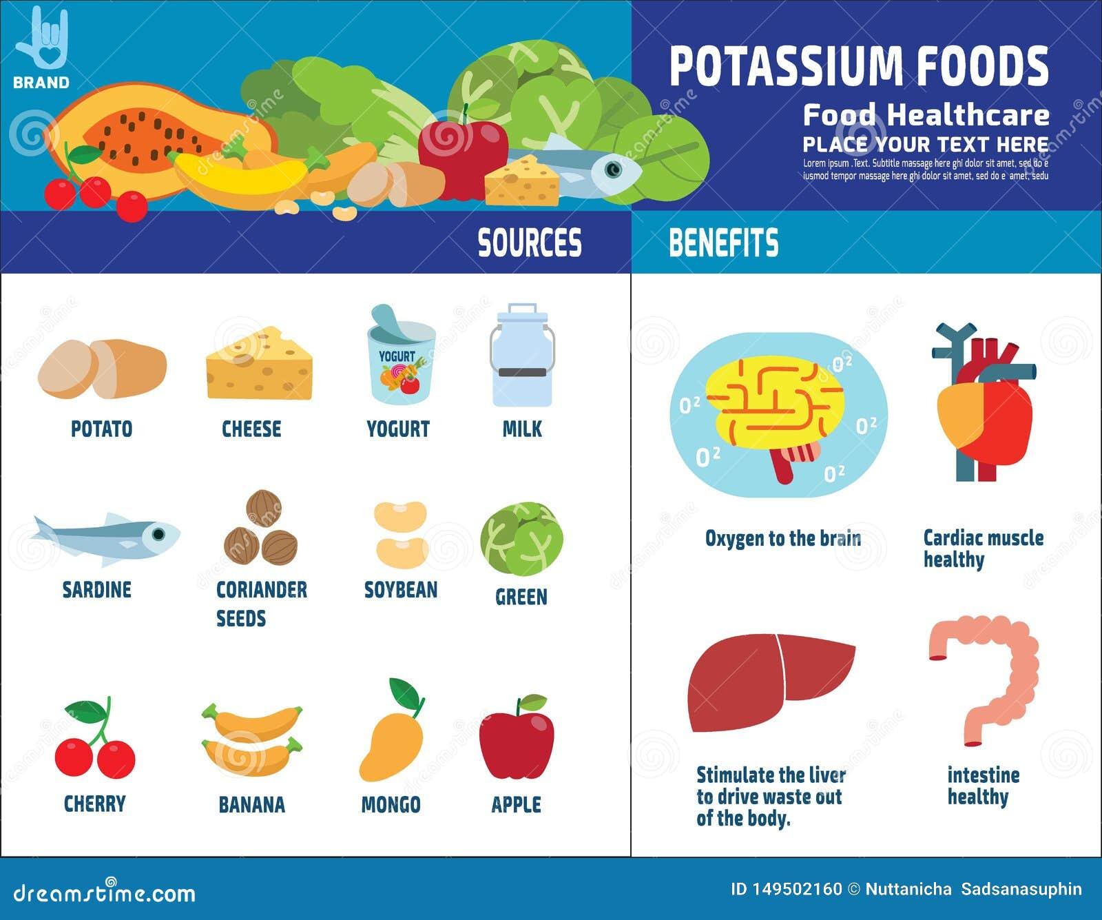 Karmowych zdrowie element?w ikony broszurki wektorowy infographic poj?cie