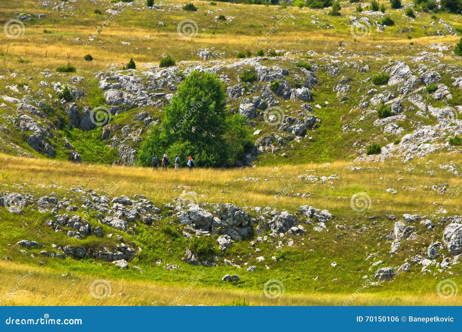 Karstsinkholes, detalj från tjatar på platålandskap