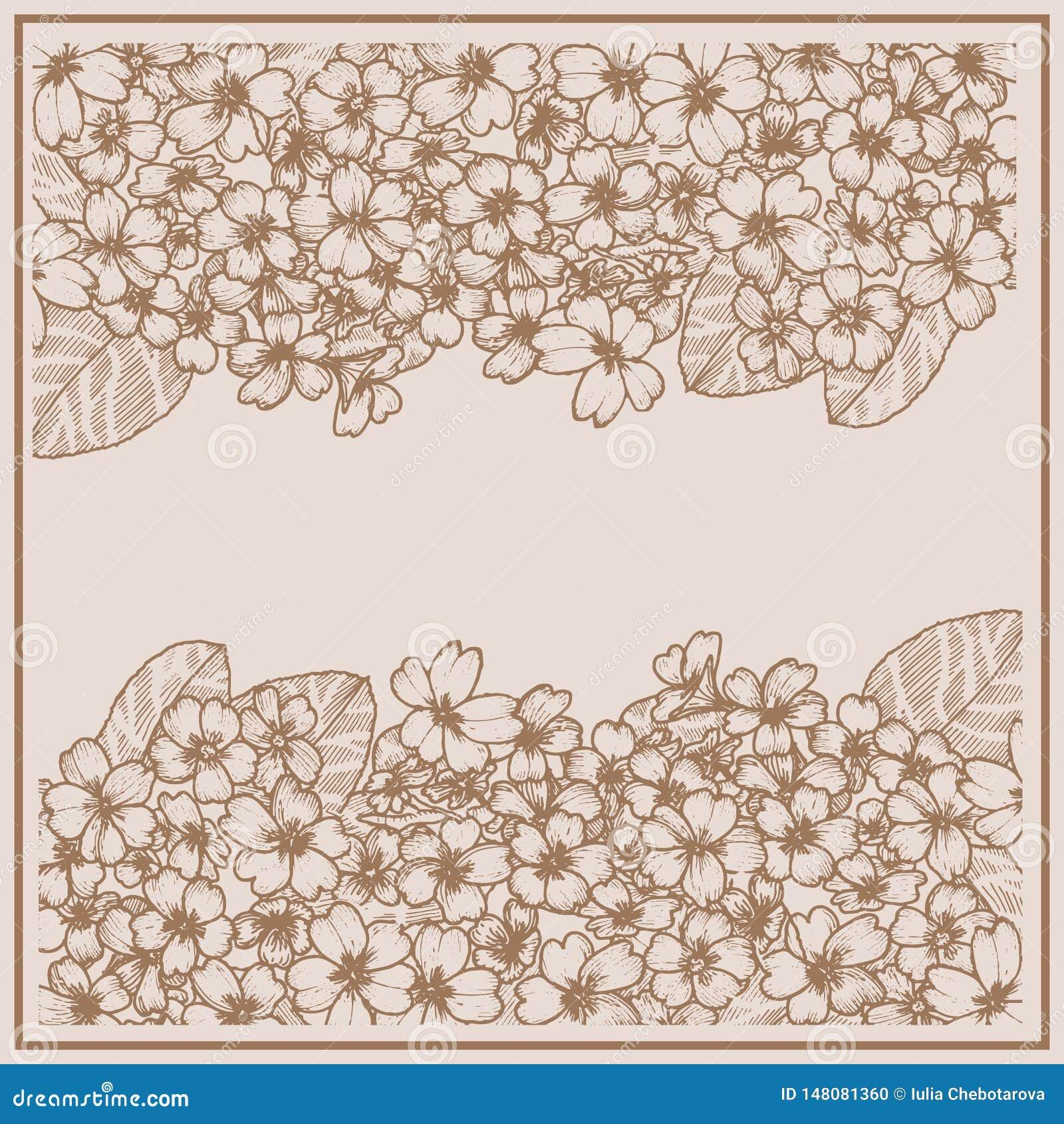 Karte mit Primel graphiken Botanische zeichnende Blume