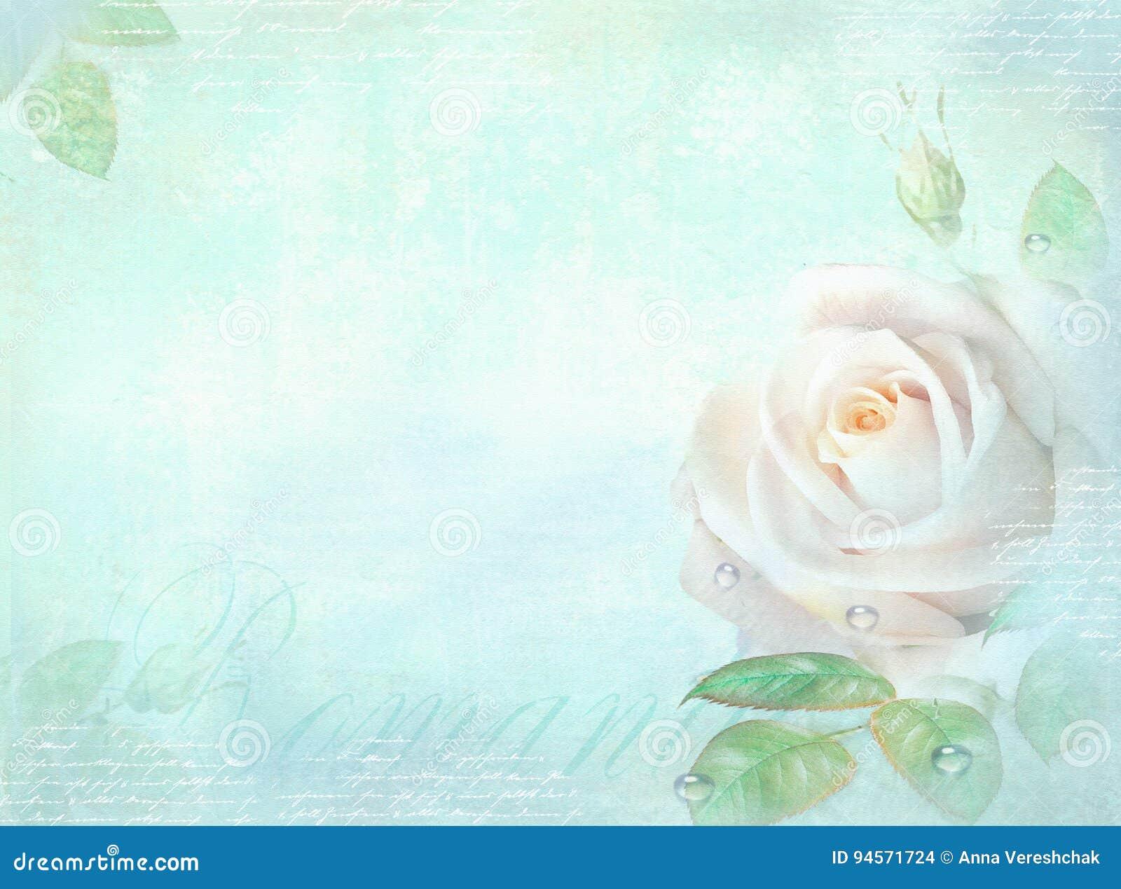 Karte Mit Rosafarbener Blume Auf Einem Hellen Türkishintergrund ...
