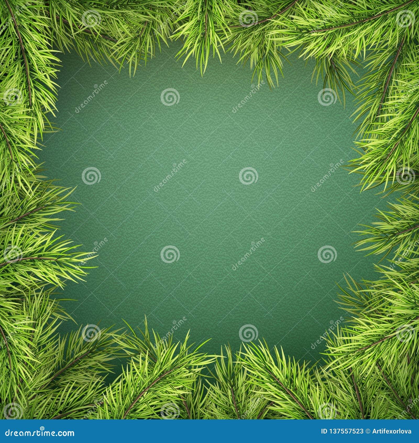 Karte mit Weihnachtsbaumgrenze, realistischer Tannenbaumniederlassungsrahmen auf grünem Hintergrund ENV 10