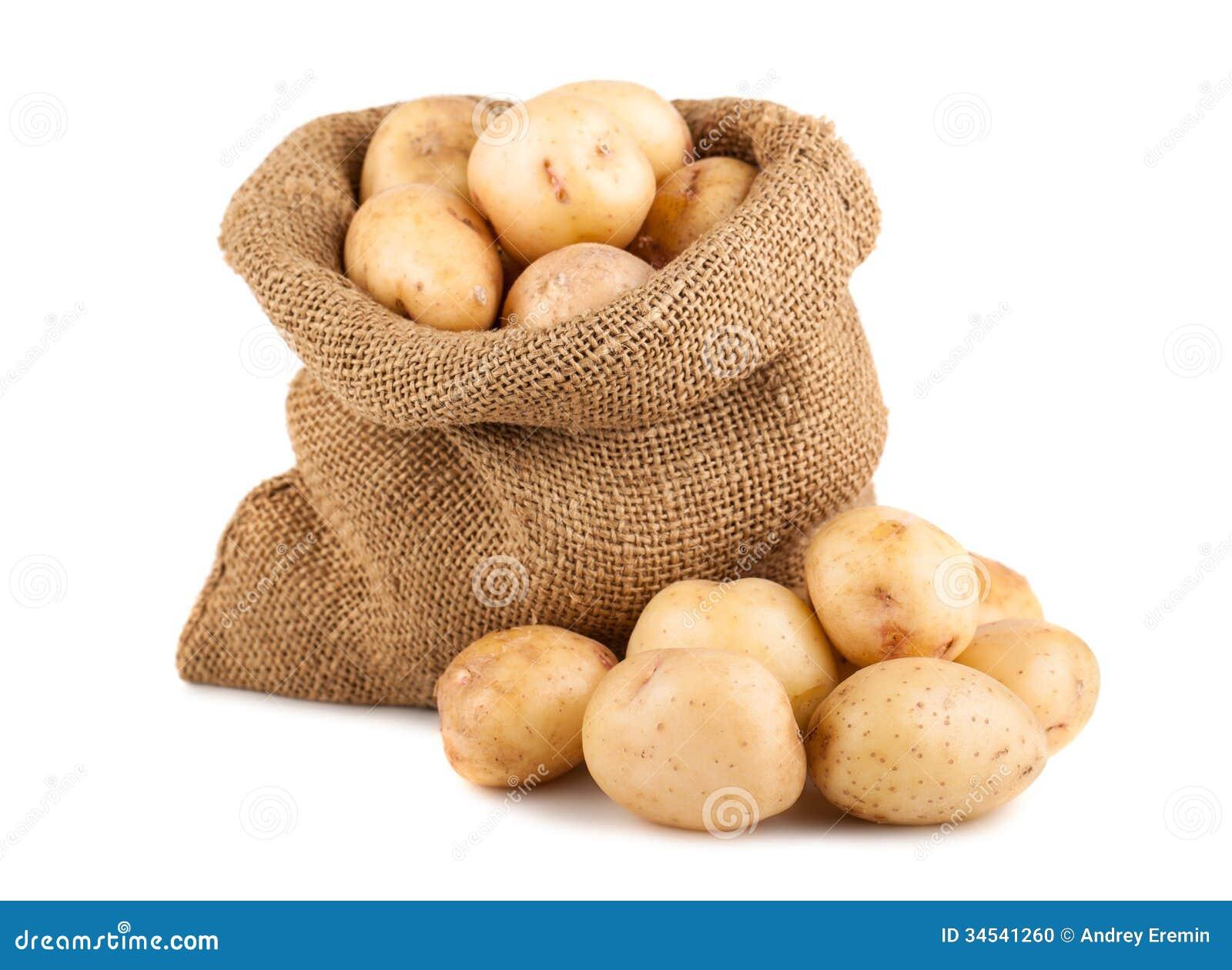 kartoffeln im sack stockfoto bild 34541260