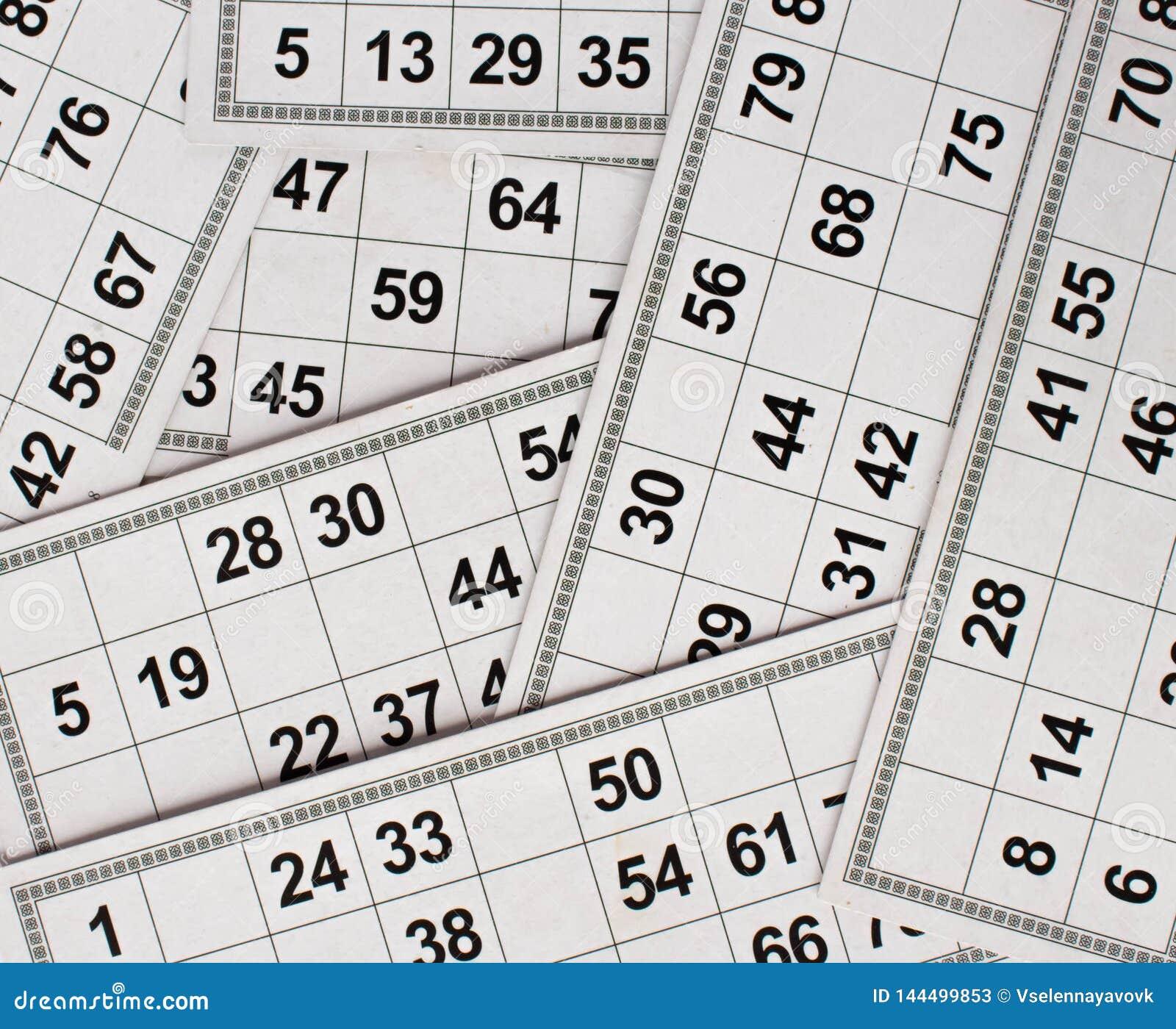 Karty i baryłki dla Rosyjskiej loteryjki bingo gry na białym tle