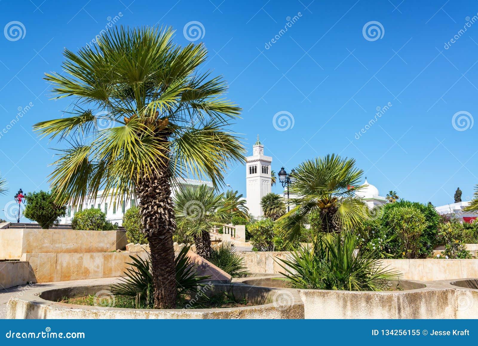 Kasbah-Quadrat in Tunis