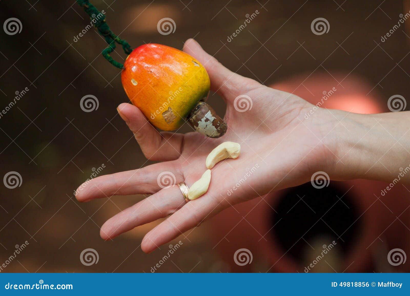 Kasju och frukt
