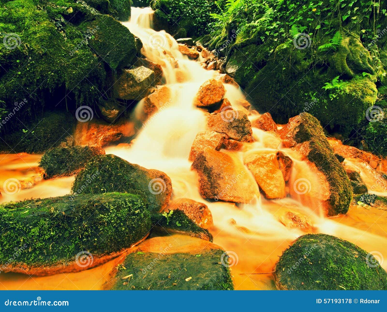 Kaskader i snabb ström av mineralvatten Röda ferric bottensatser på stora stenblock mellan gröna ormbunkar