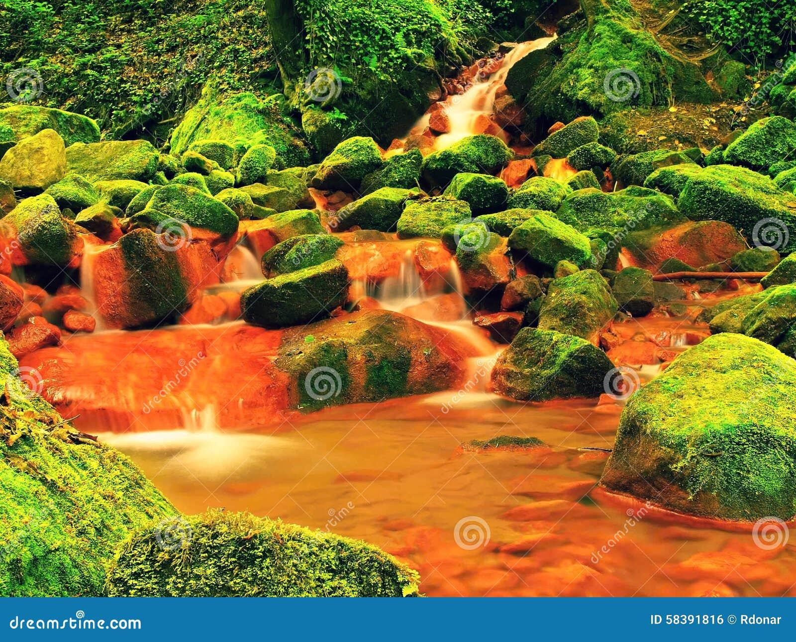 Kaskady w gwałtownych woda mineralna Czerwoni żelazowi cedziny na dużych mechatych głazach między paprociami