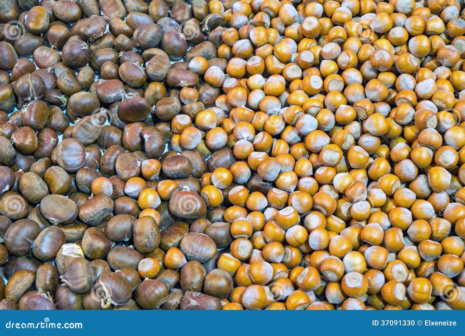 Download Kasztany i hazelnuts zdjęcie stock. Obraz złożonej z owoc - 37091330
