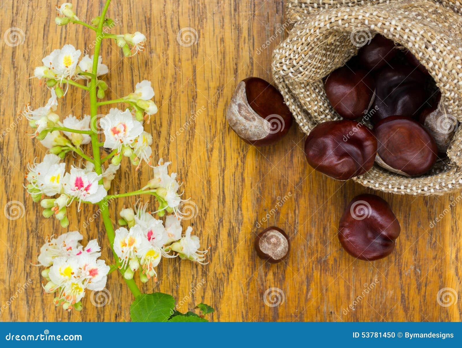 Kasztany w burlap i kwiacie na drewnie textured