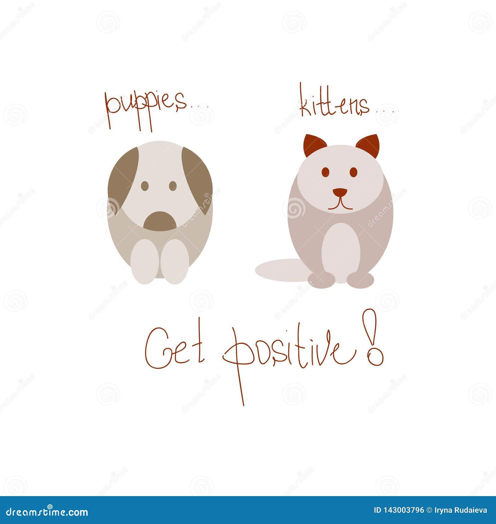 Kat en hond op het positief