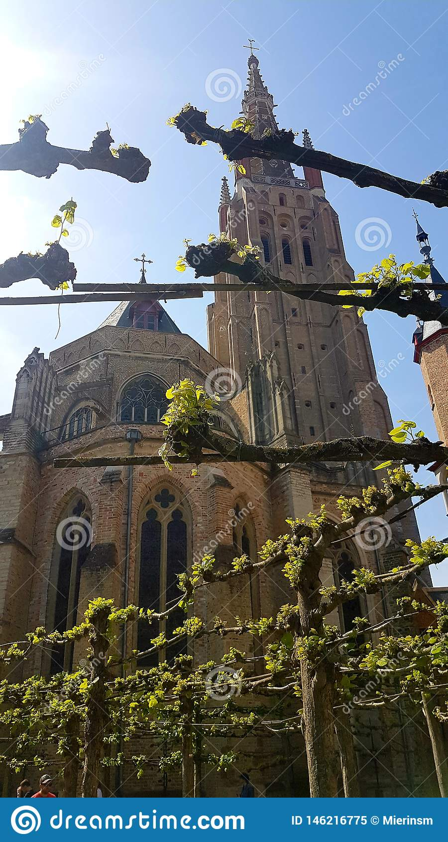 Katedra w Bruges