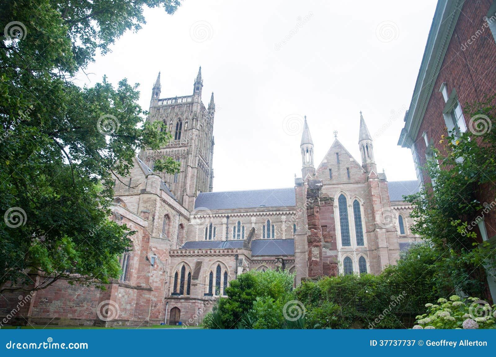 Kathedraal door de bomen