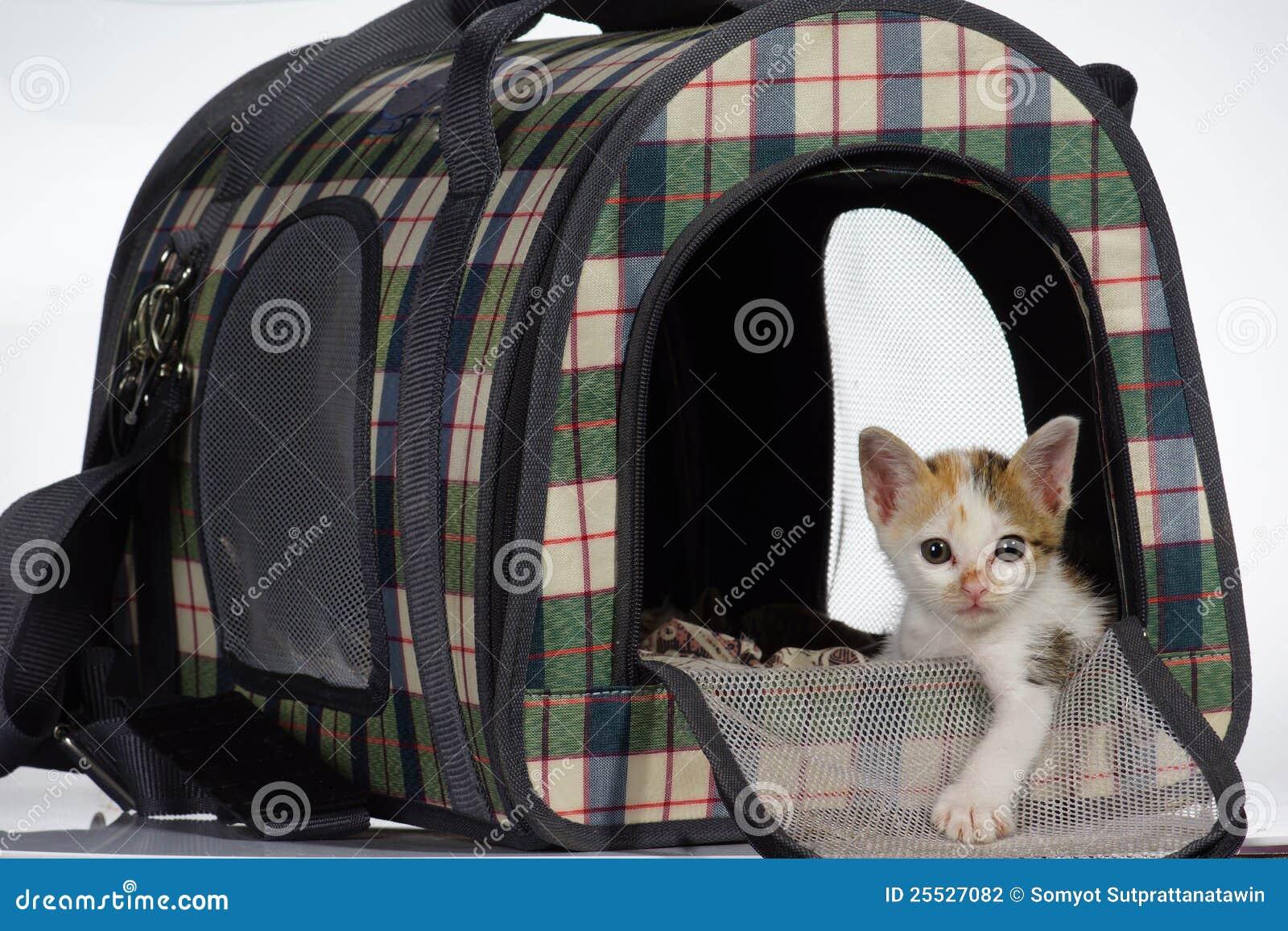Katje in comfortabel huisbed