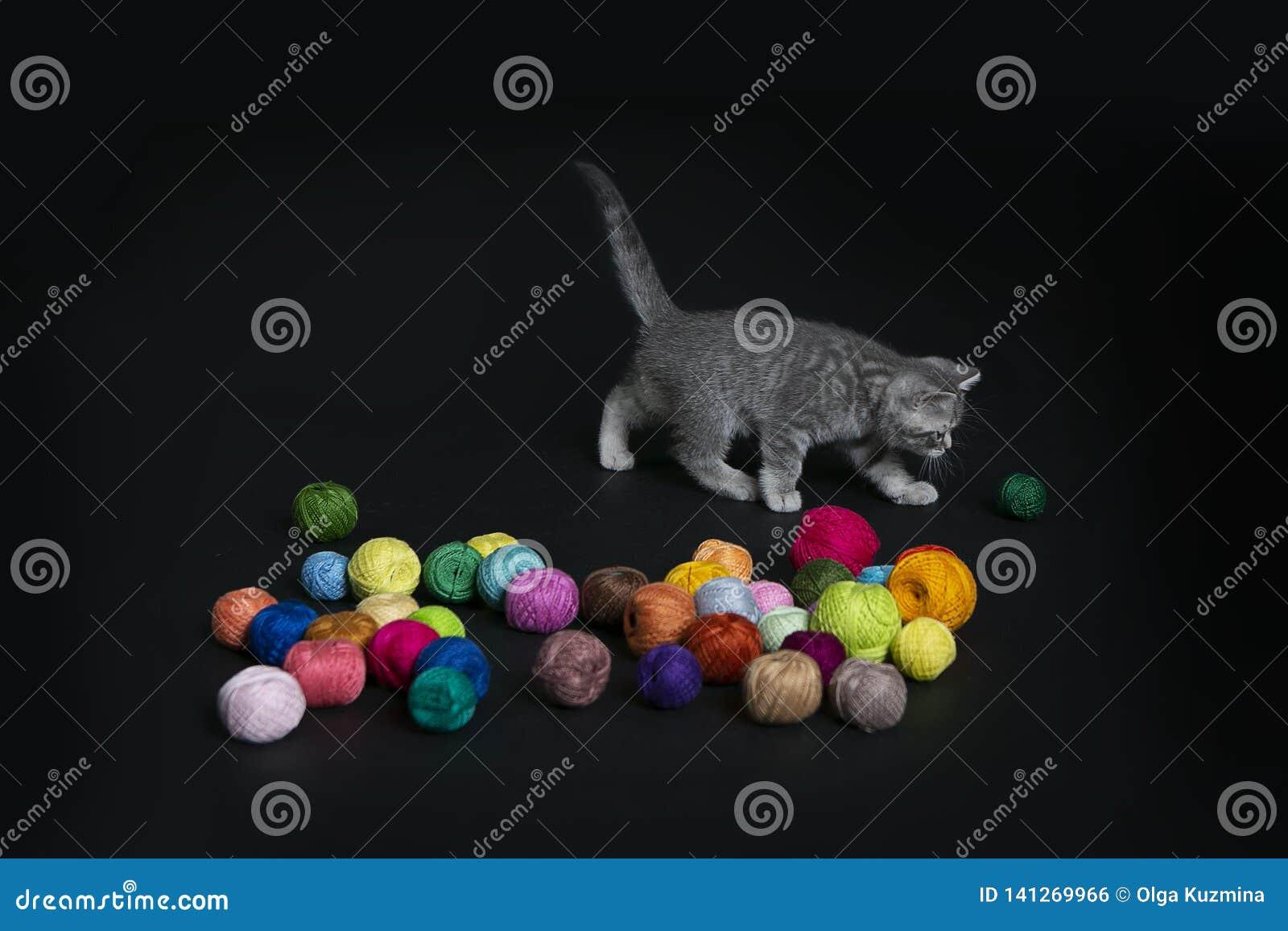 Katje en ballen van multicolored draden