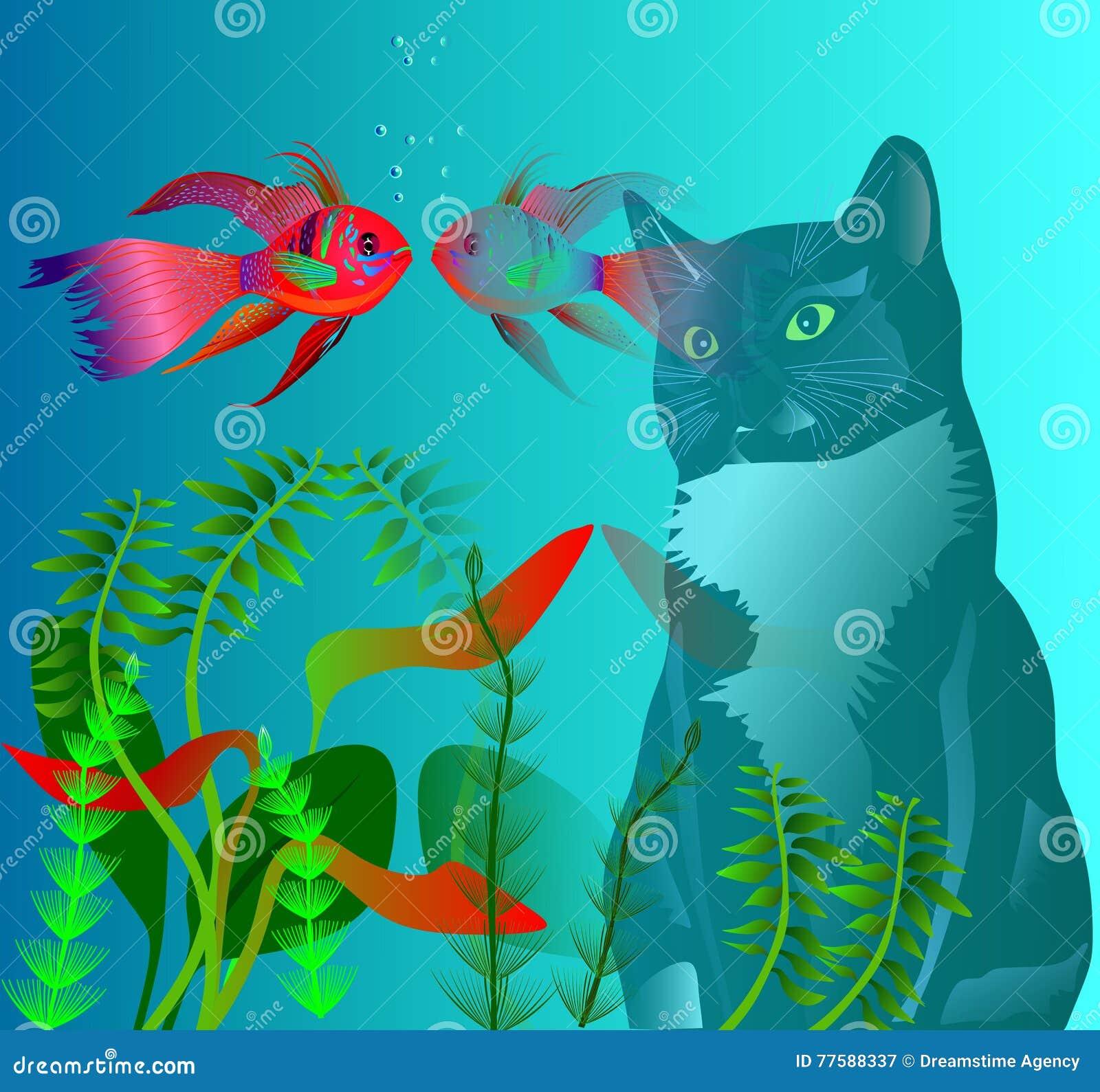 Katt och fisk