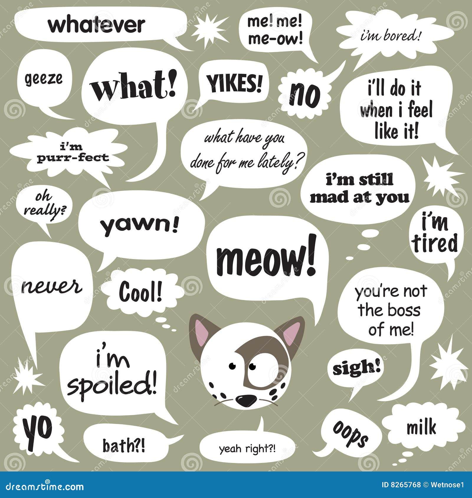 Katten bespreking