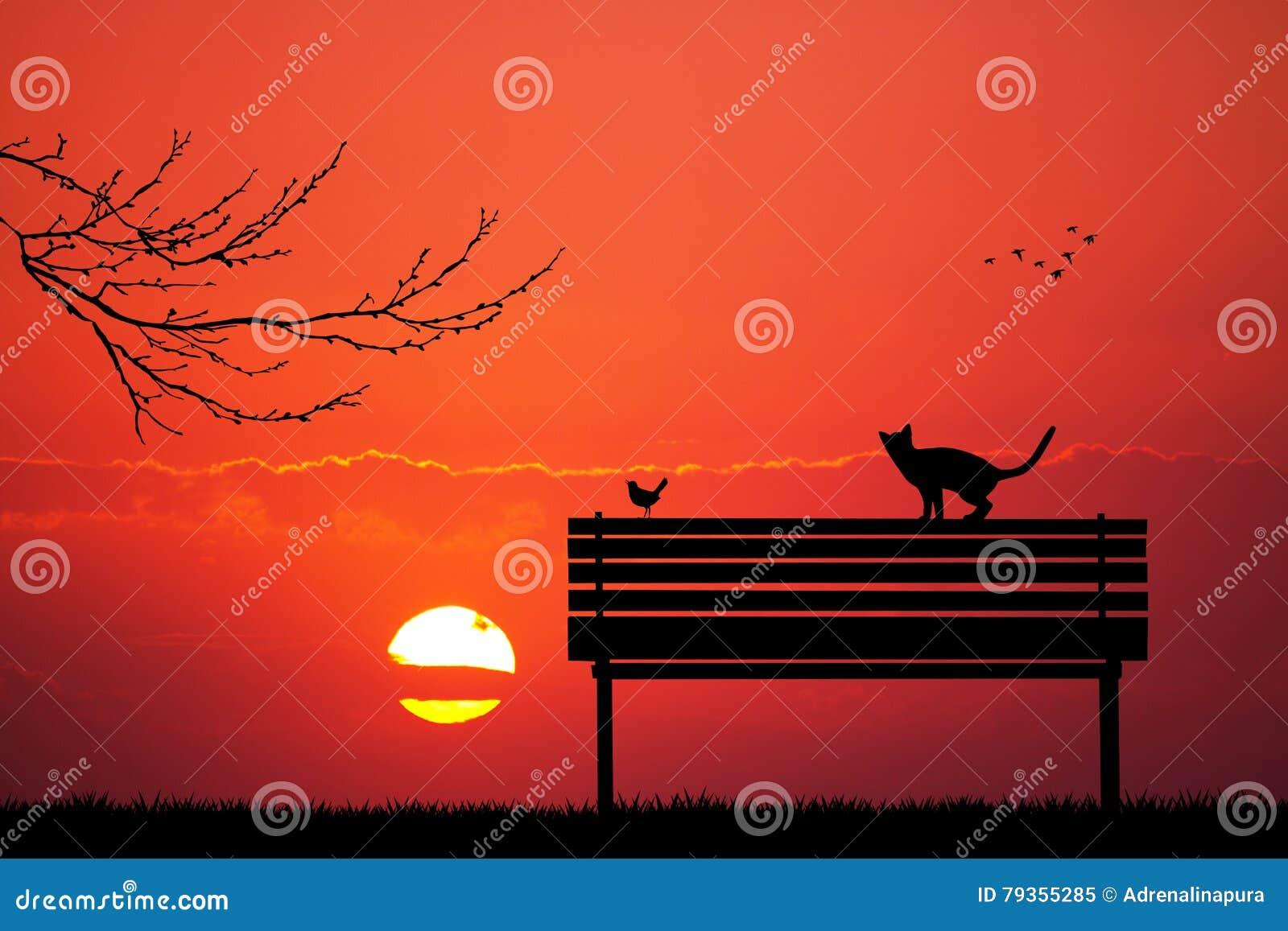 Katten en vogel op bank bij zonsondergang