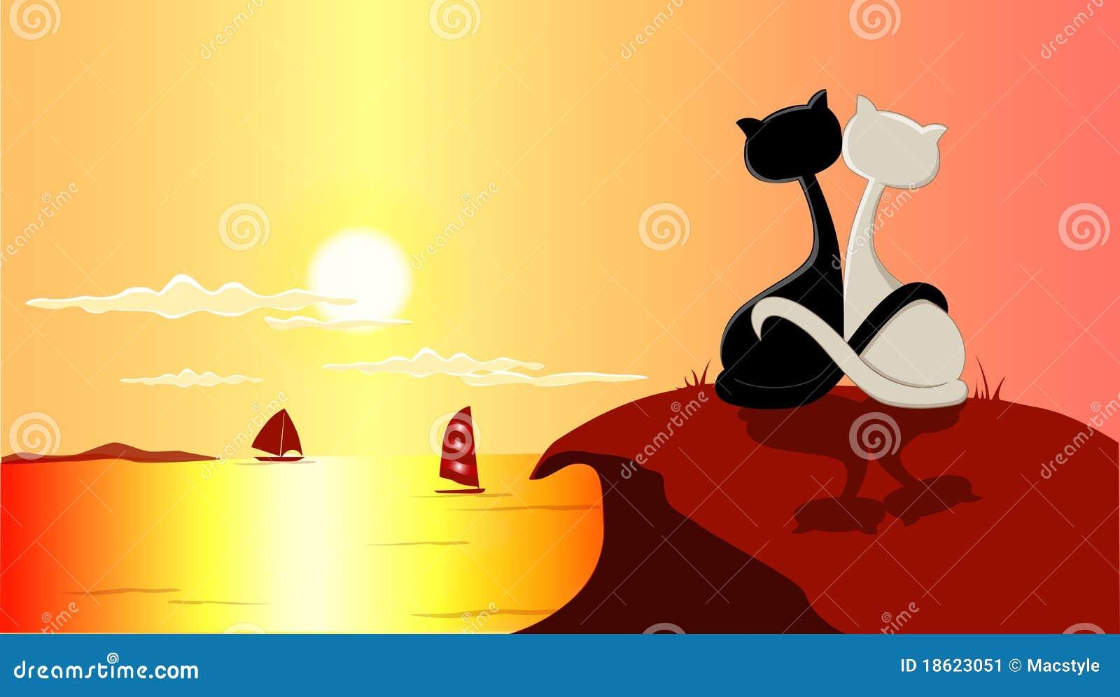 Katten en zonsondergang