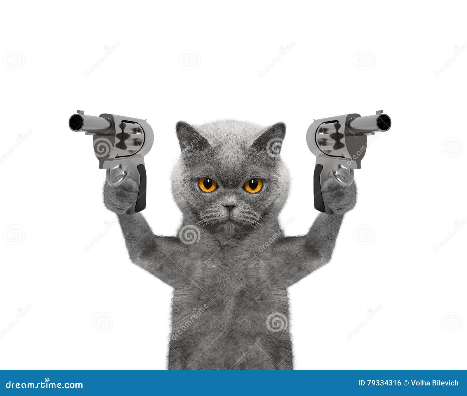 Katten med vapen är mördaren