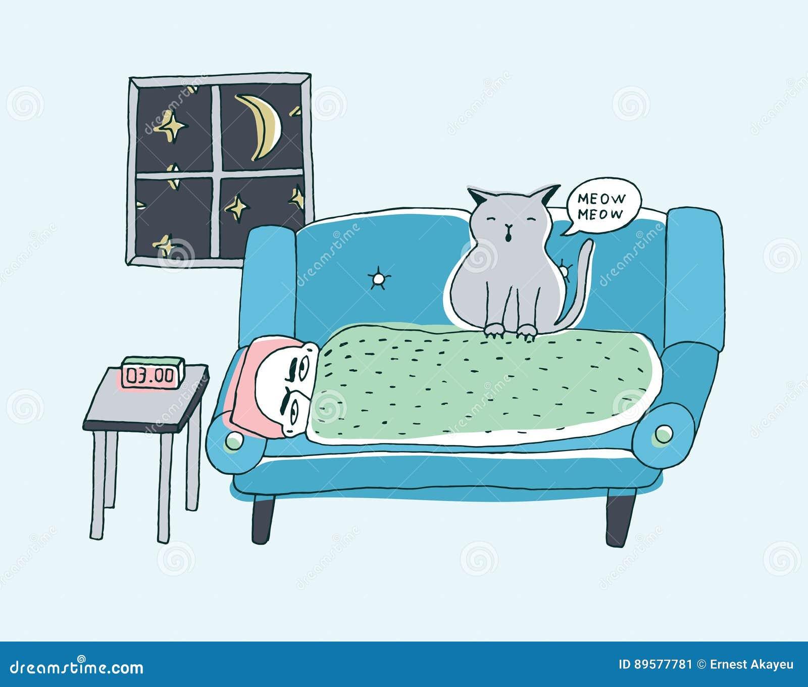 är katten på natten