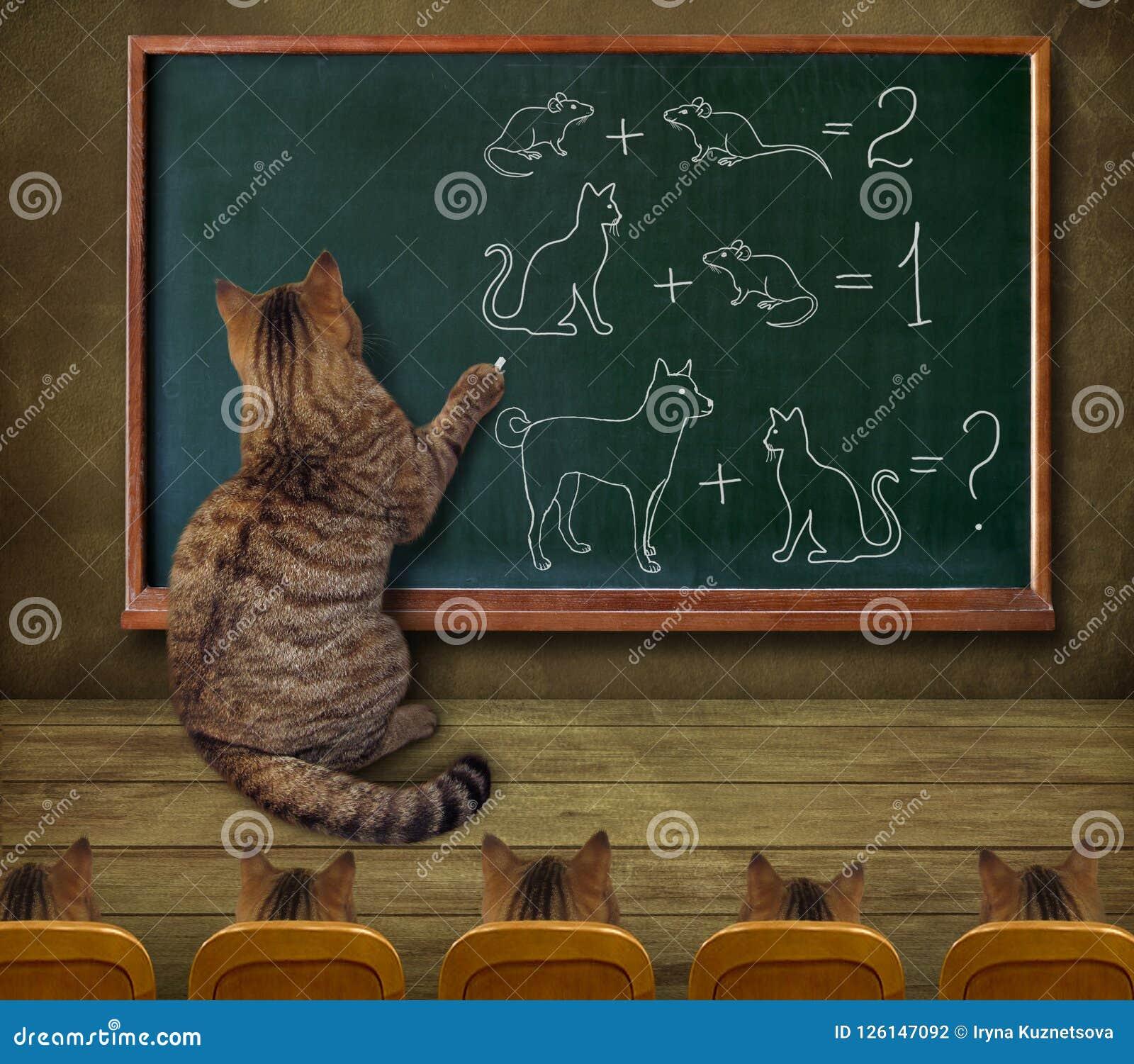 Kattlärare och hans elever